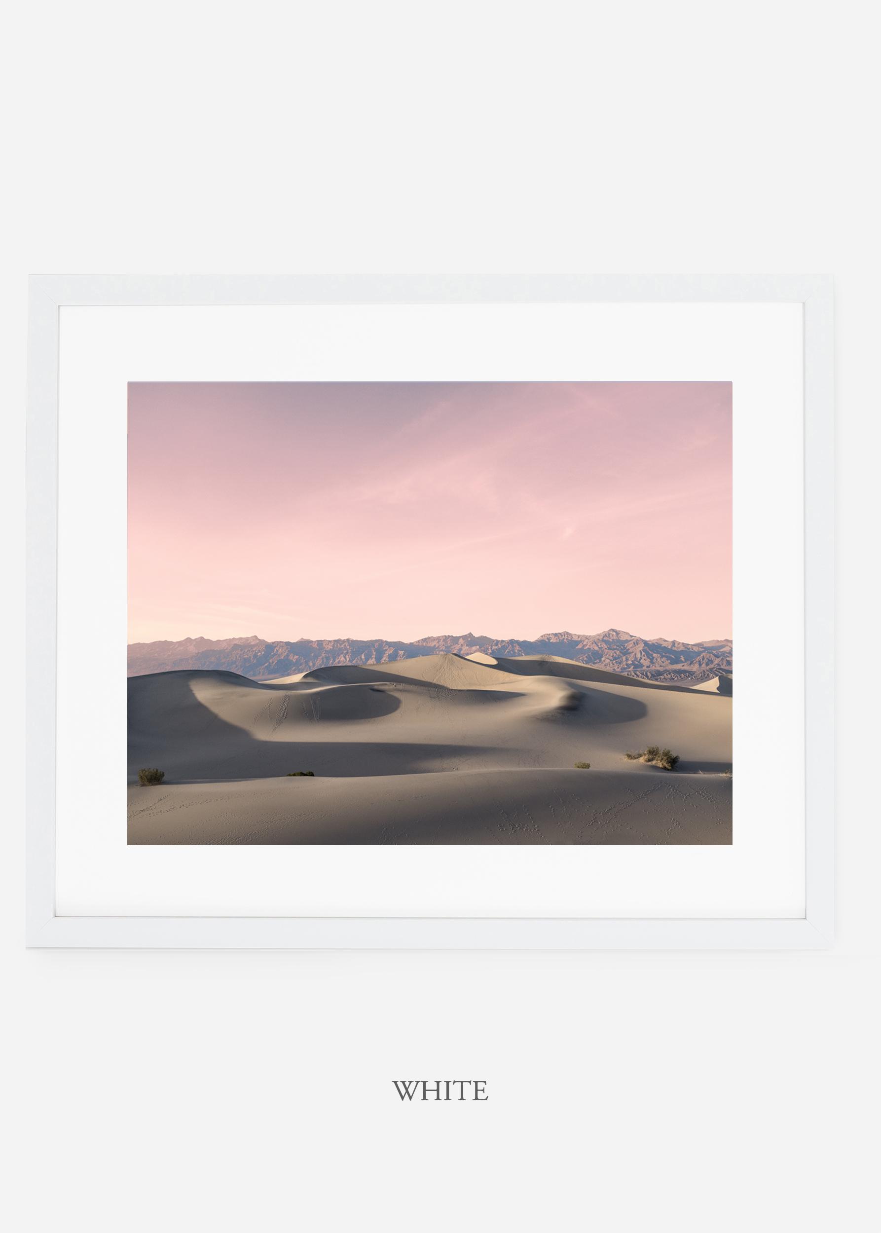 wildercalifornia_whiteframe_deathvalley_17_minimal_cactus_art_interiordesign_.jpg