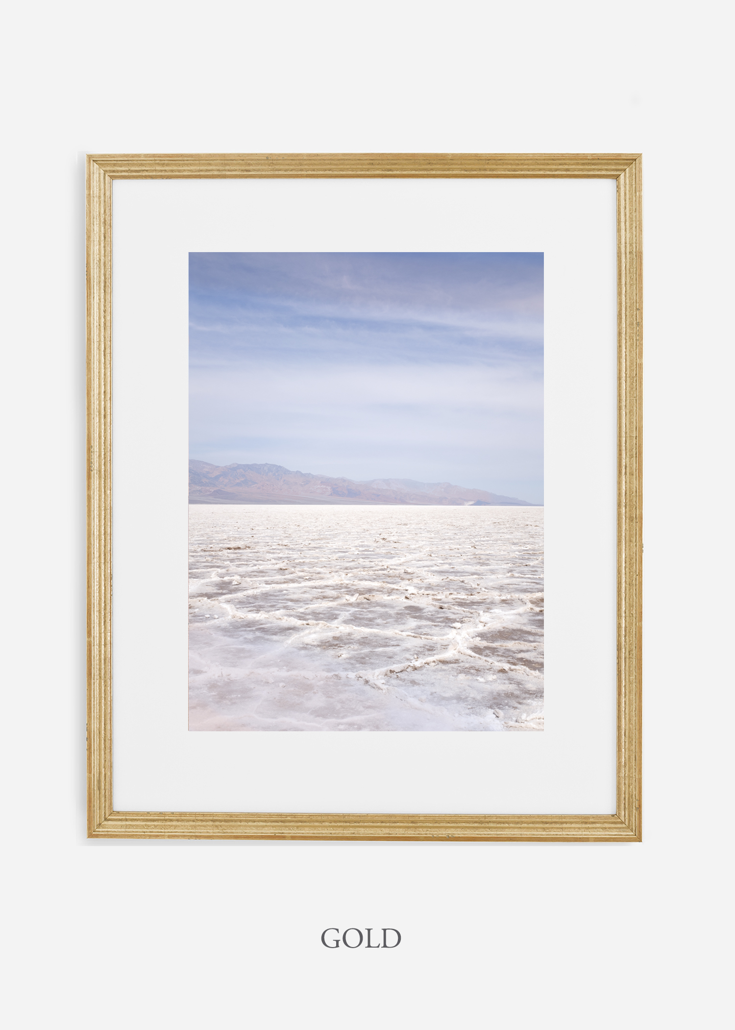 DeathValley_goldframe__No.18_interiordesign_cactusprint_art.jpg