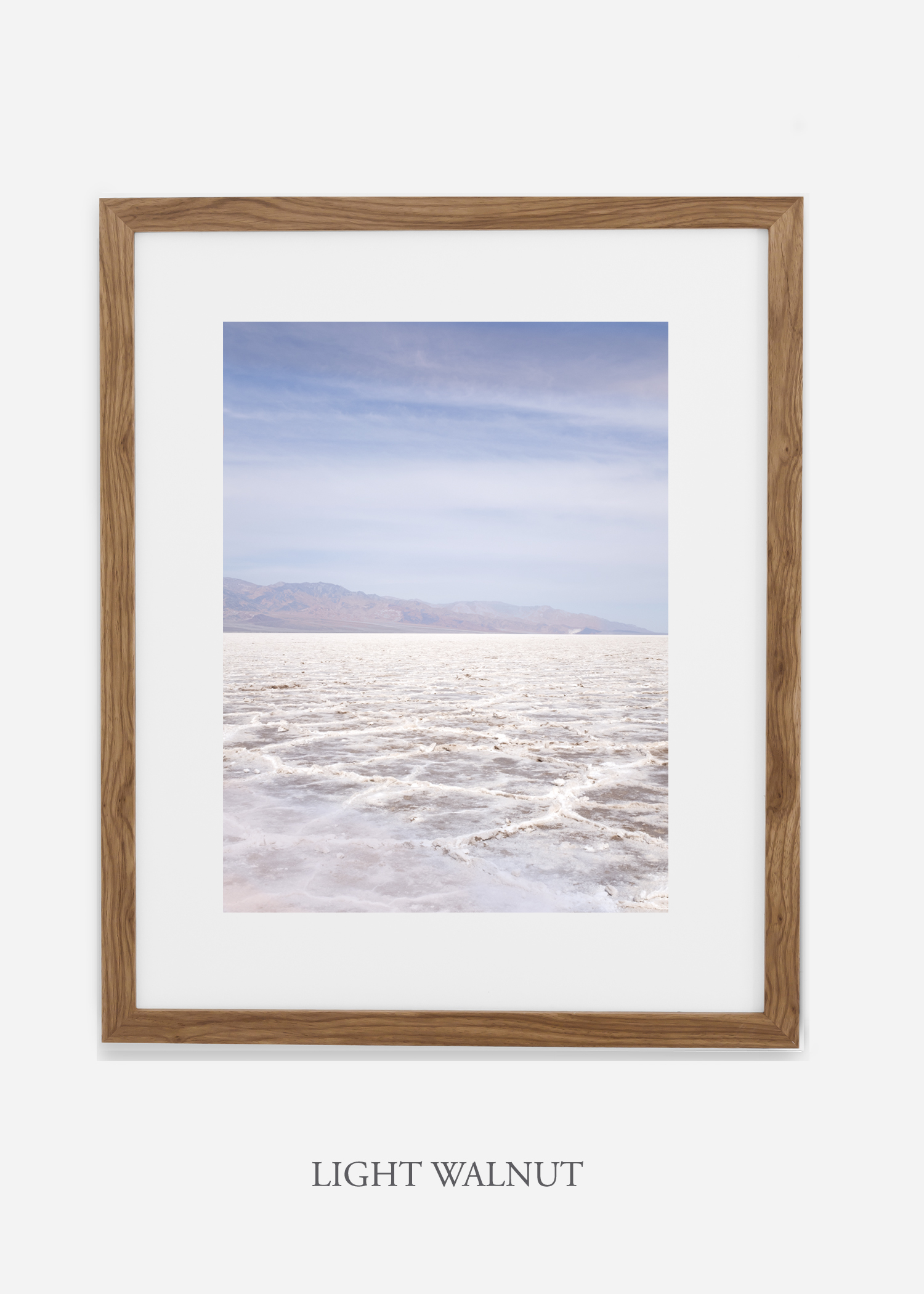 DeathValley_lightwalnutframe__No.18_interiordesign_cactusprint_art.jpg
