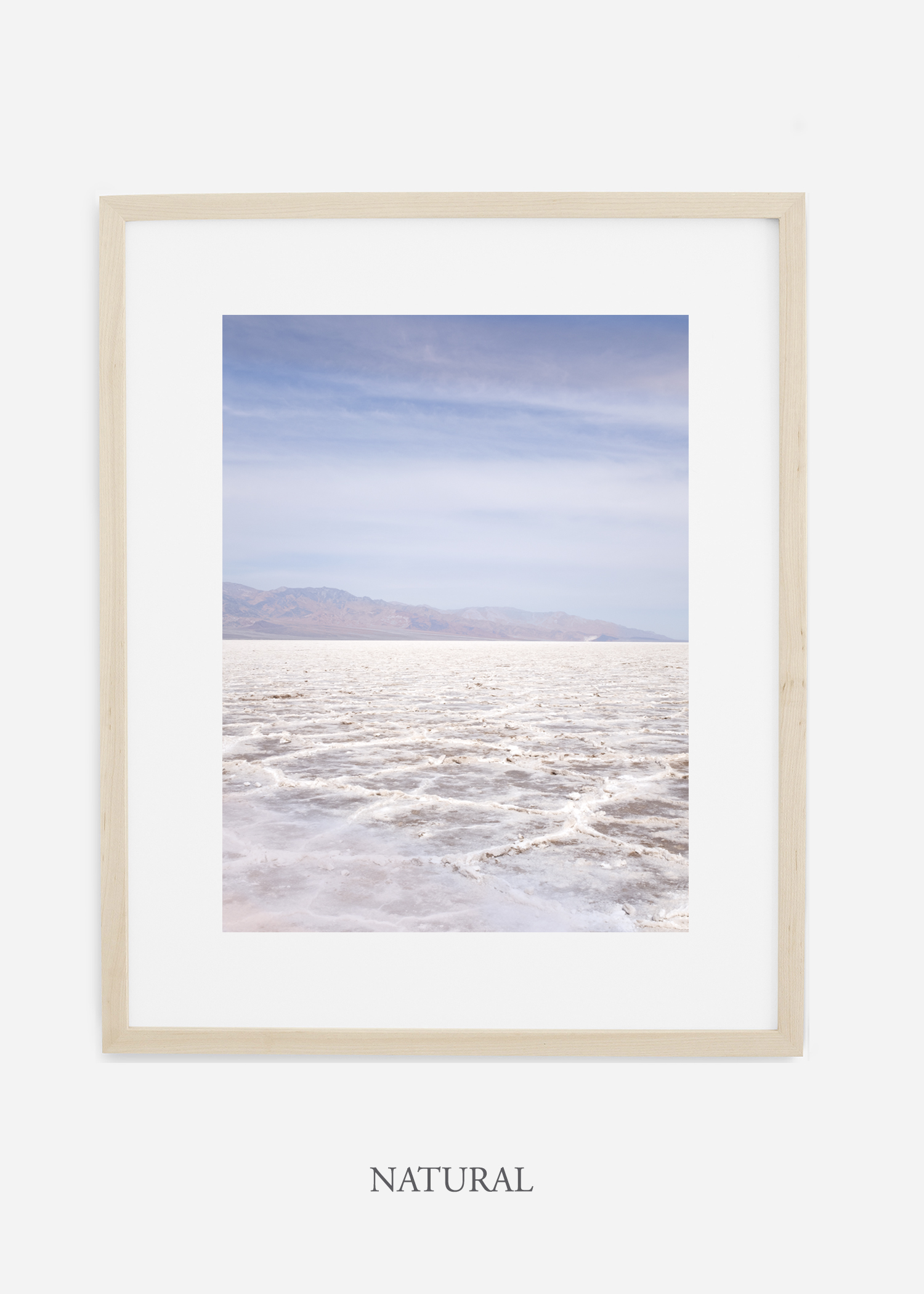DeathValley_naturalframe__No.18_interiordesign_cactusprint_art.jpg