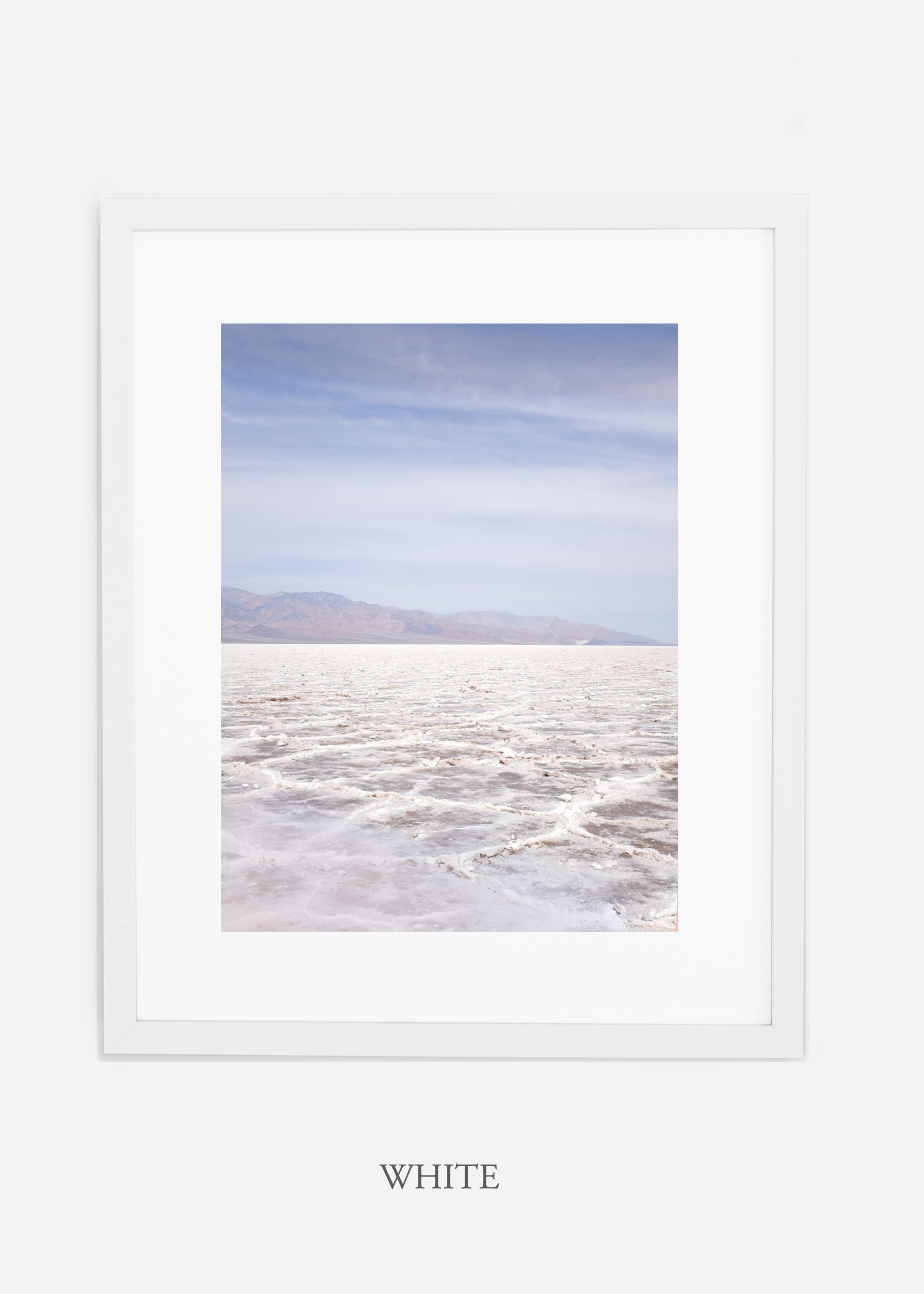 DeathValley_whiteframe__No.18_interiordesign_cactusprint_art.jpg
