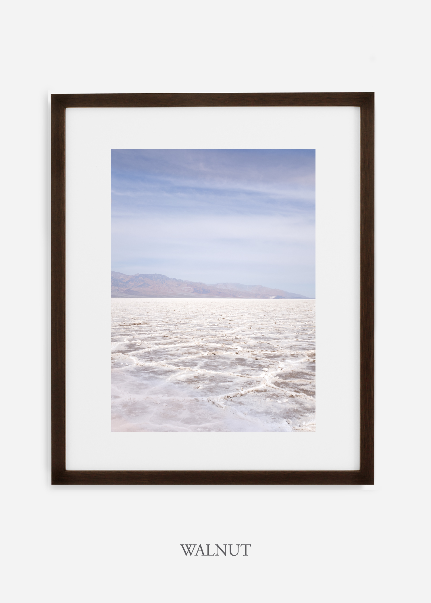 DeathValley_walnutframe__No.18_interiordesign_cactusprint_art.jpg