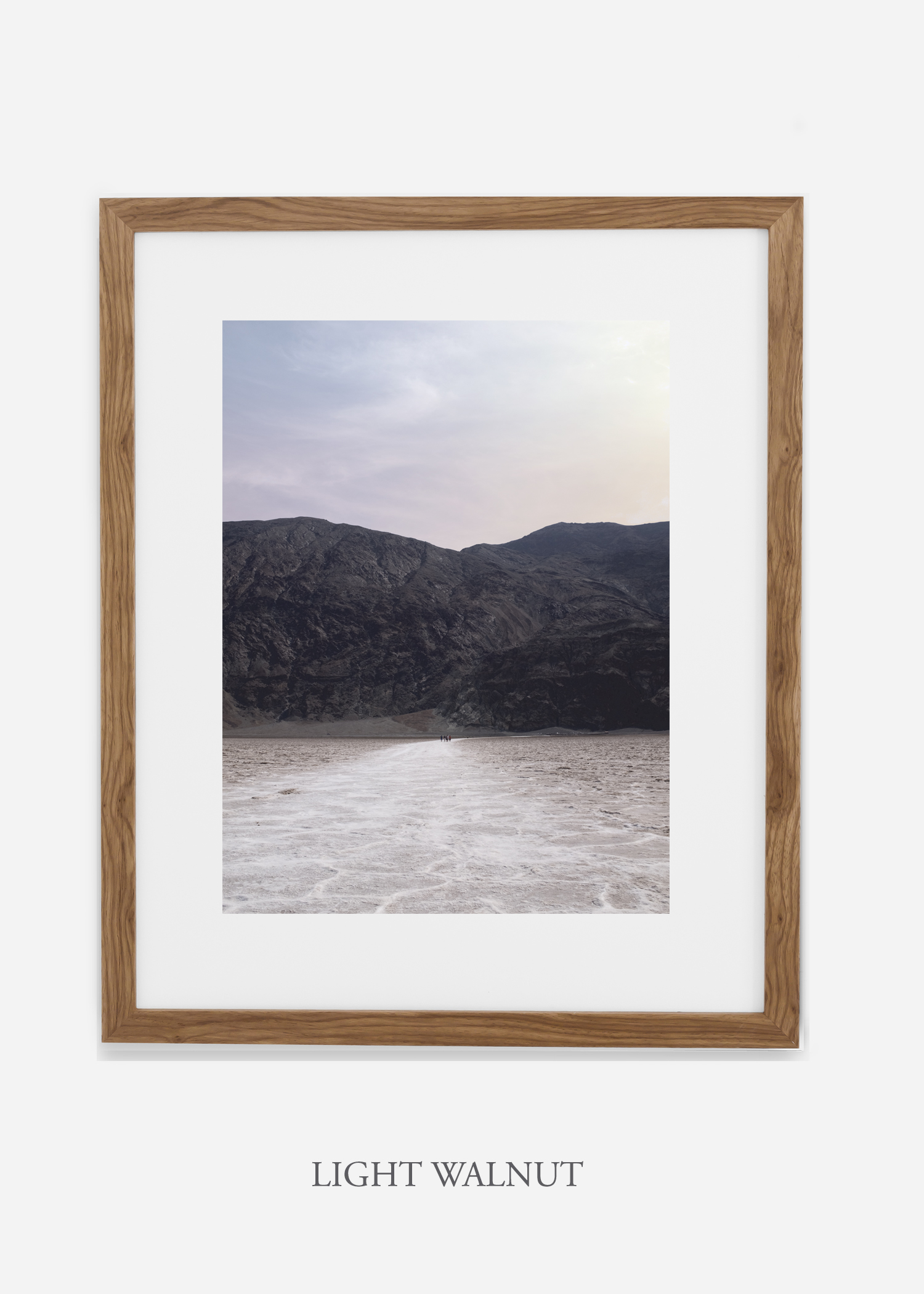 DeathValley_lightwalnutframe__No.20_interiordesign_cactusprint_art.jpg