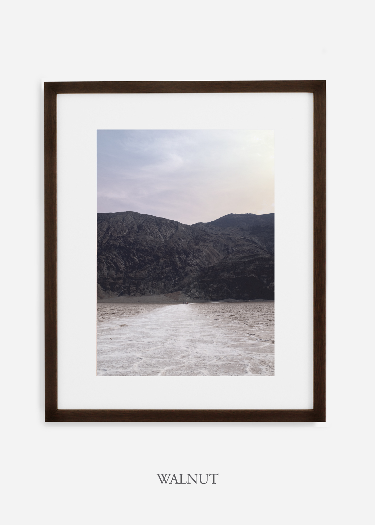 DeathValley_walnutframe__No.20_interiordesign_cactusprint_art.jpg