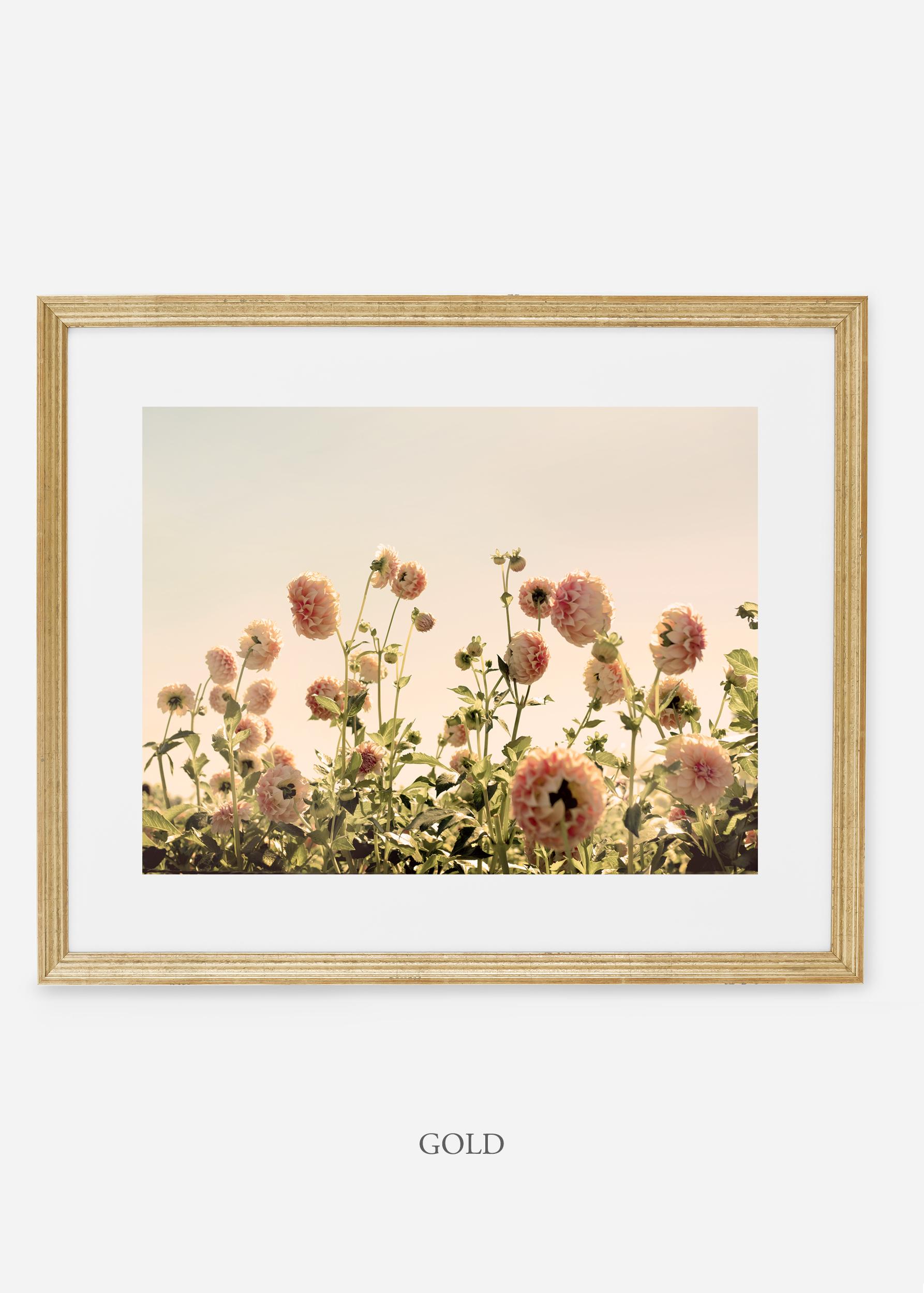 GoldFrame_DahliaNo.1_WilderCalifornia_Art_Floral_Homedecor_Prints_Dahlia_Botanical_Artwork_Interiordesign.jpg