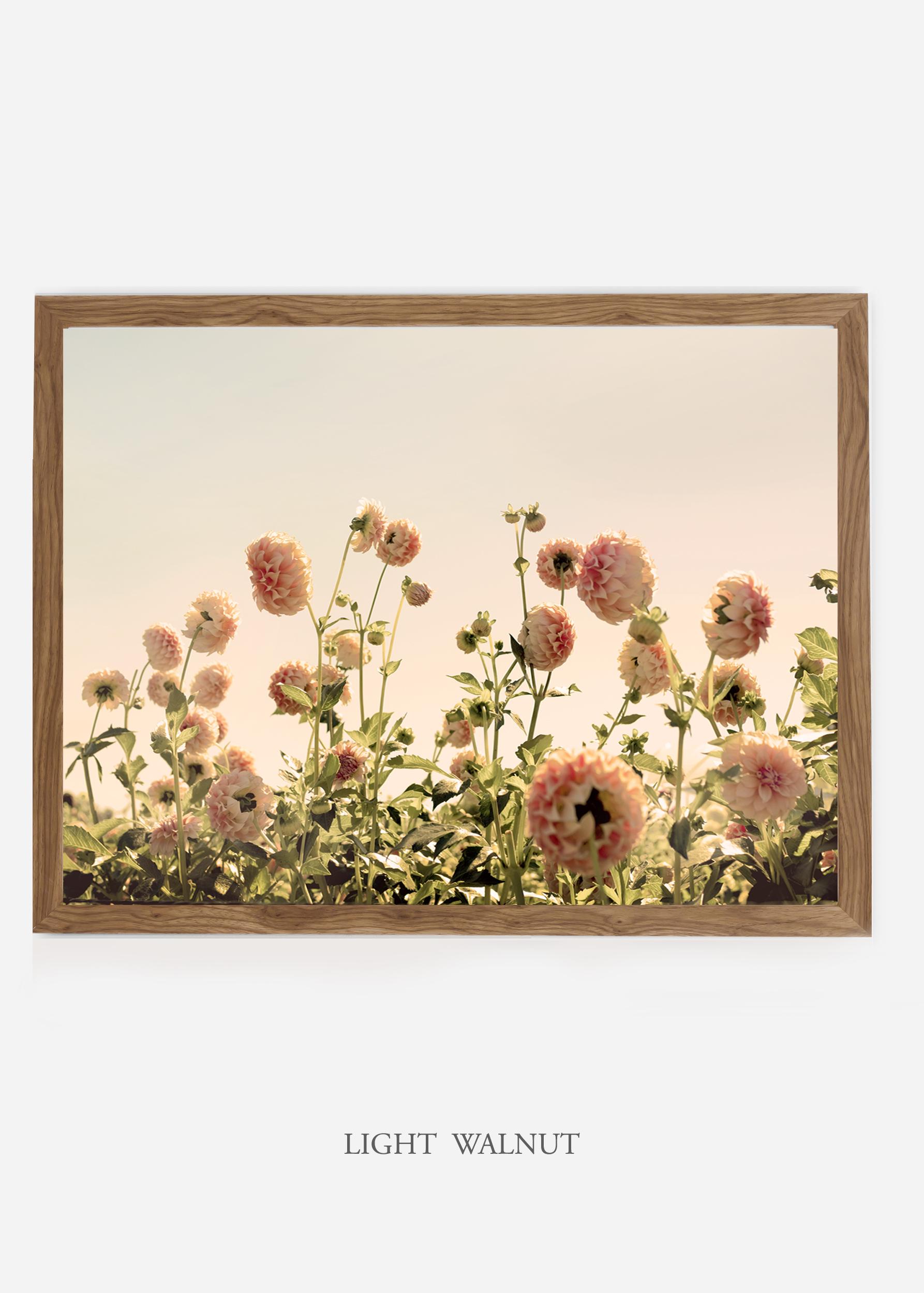 NoMat_LightWalnutFrame_DahliaNo.1_WilderCalifornia_Art_Floral_Homedecor_Prints_Dahlia_Botanical_Artwork_Interiordesign.jpg