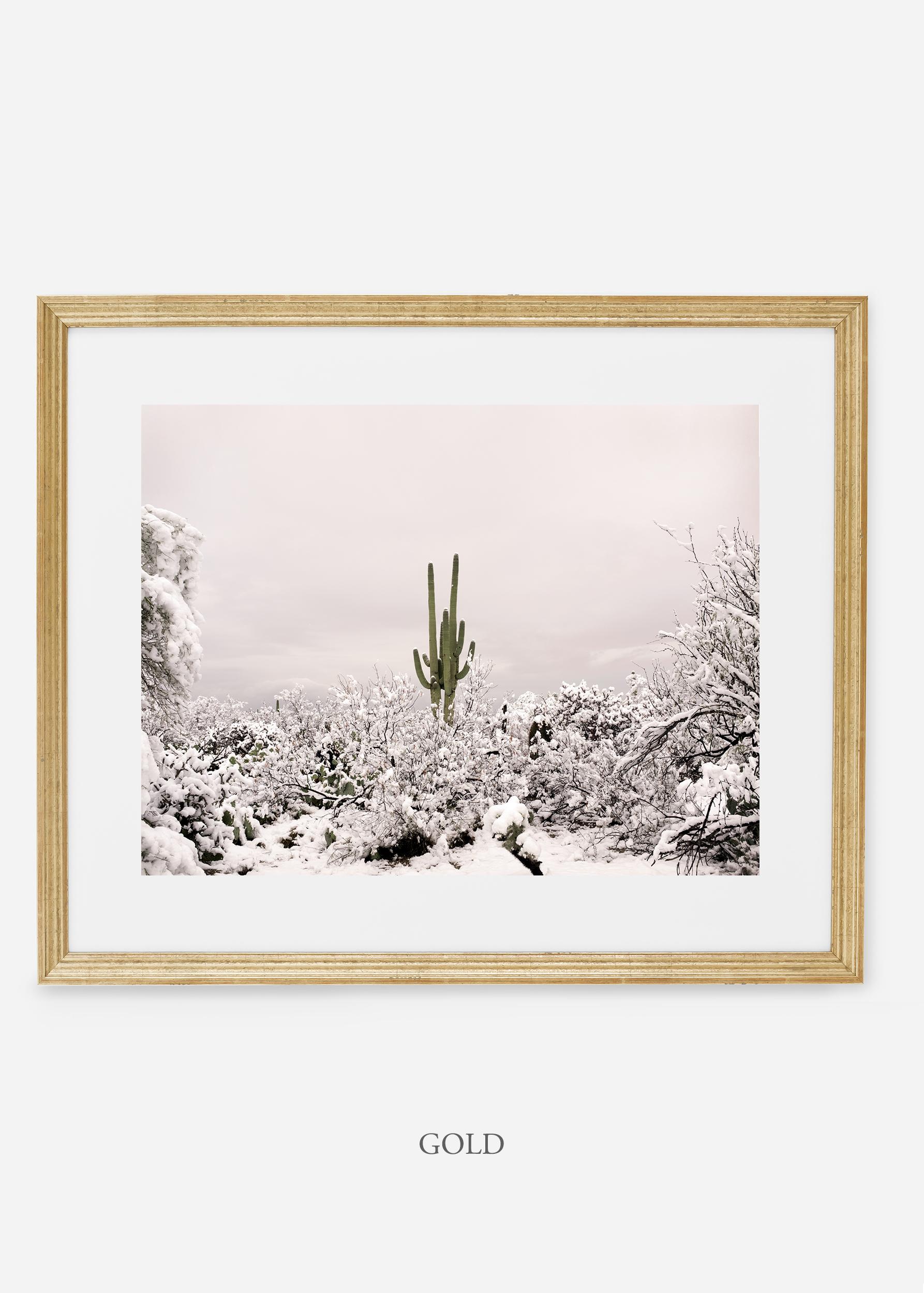 goldframe-saguaroNo.1-wildercalifornia-art-wallart-cactusprint-homedecor-prints-arizona-botanical-artwork-interiordesign.jpg