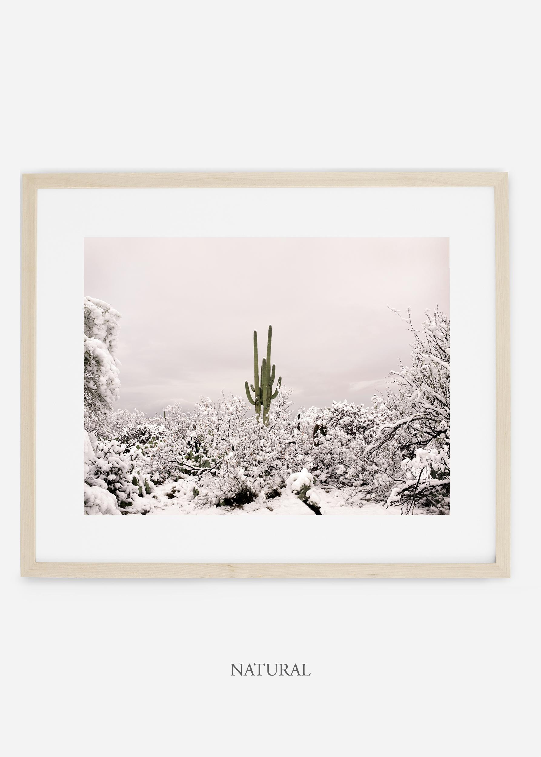 naturalframe-saguaroNo.1-wildercalifornia-art-wallart-cactusprint-homedecor-prints-arizona-botanical-artwork-interiordesign.jpg