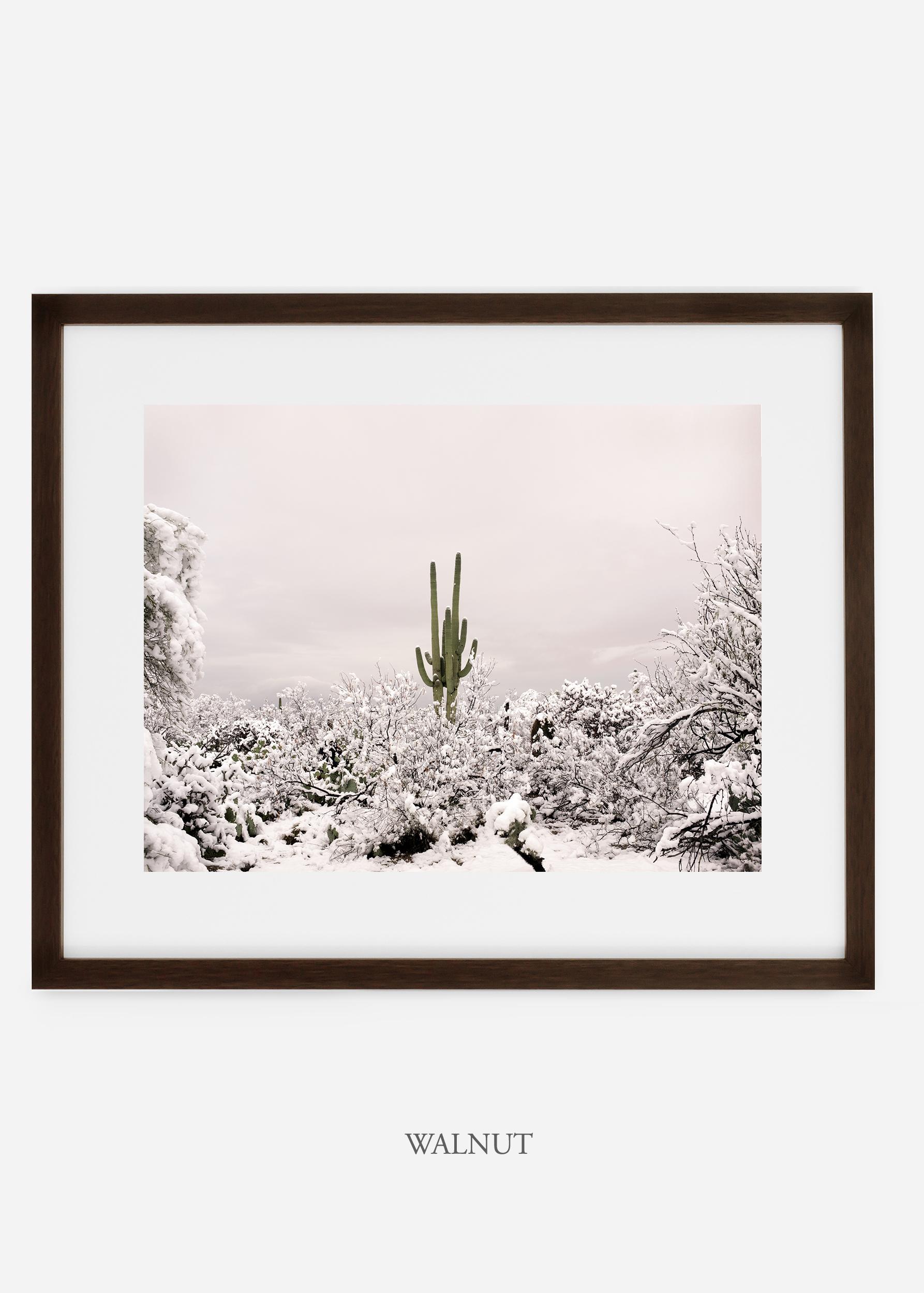 walnutframe-saguaroNo.1-wildercalifornia-art-wallart-cactusprint-homedecor-prints-arizona-botanical-artwork-interiordesign.jpg