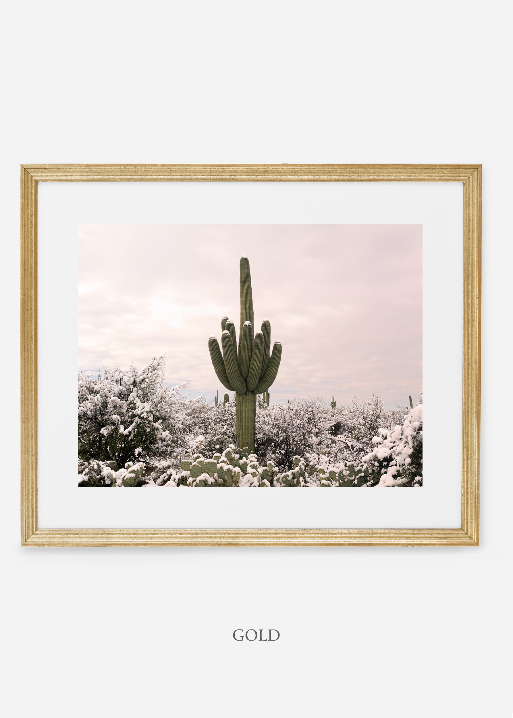 goldframe-saguaroNo.3-wildercalifornia-art-wallart-cactusprint-homedecor-prints-arizona-botanical-artwork-interiordesign.jpg