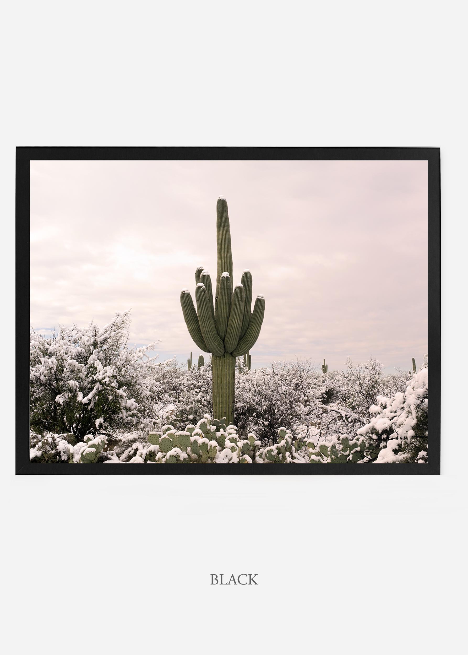 nomat_blackframe-saguaroNo.3-wildercalifornia-art-wallart-cactusprint-homedecor-prints-arizona-botanical-artwork-interiordesign.jpg