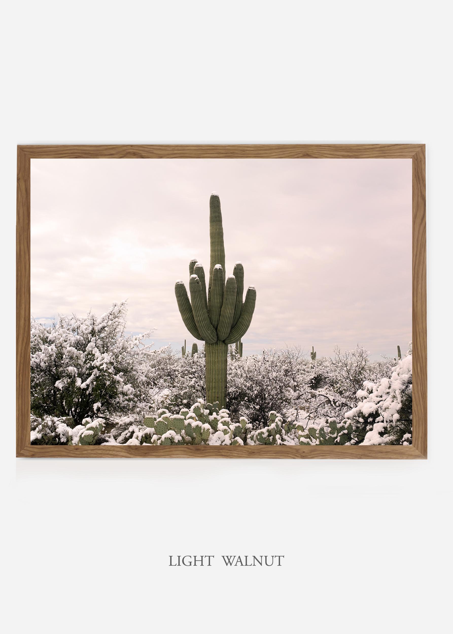 nomat_lightwalnutframe-saguaroNo.3-wildercalifornia-art-wallart-cactusprint-homedecor-prints-arizona-botanical-artwork-interiordesign.jpg