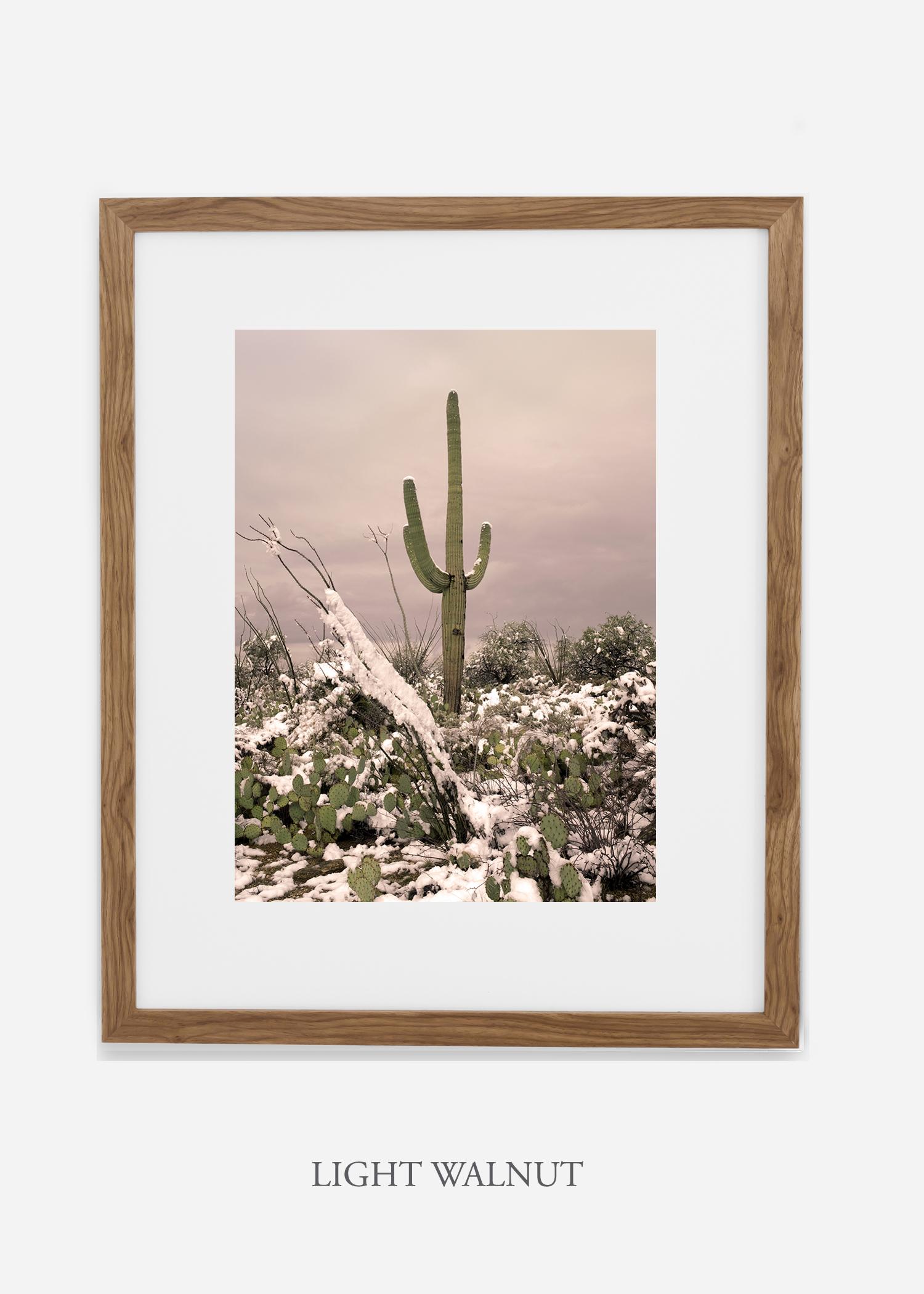 lightwalnutframe-saguaroNo.4-wildercalifornia-art-wallart-cactusprint-homedecor-prints-arizona-botanical-artwork-interiordesign.jpg