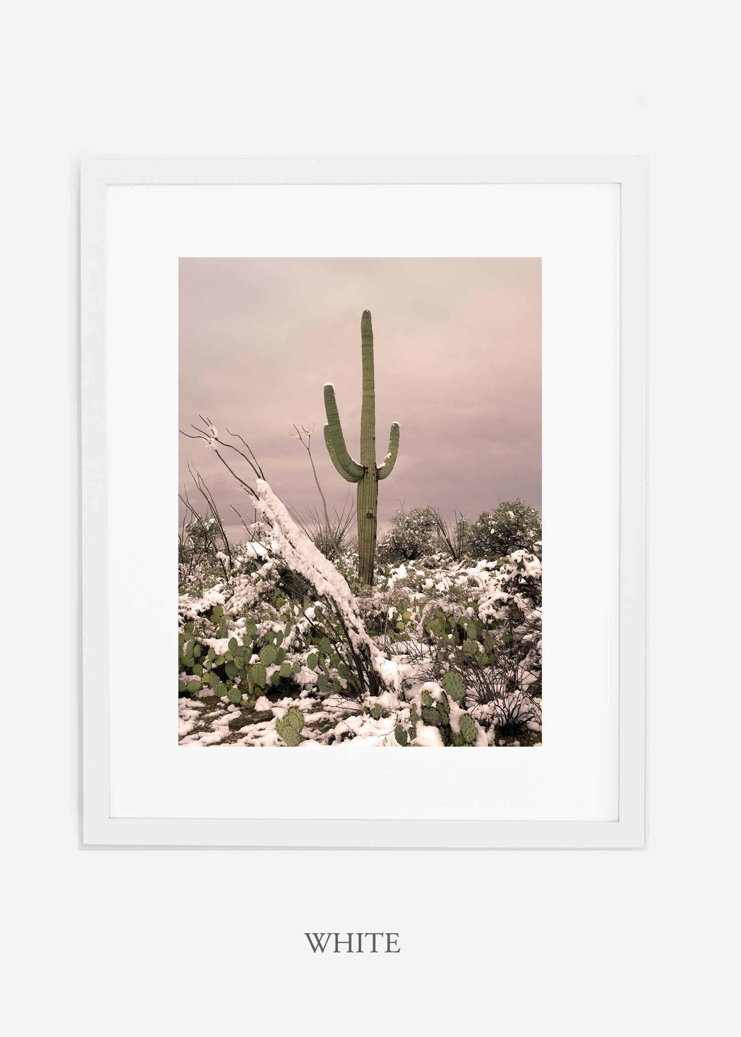 whiteframe-saguaroNo.4-wildercalifornia-art-wallart-cactusprint-homedecor-prints-arizona-botanical-artwork-interiordesign.jpg