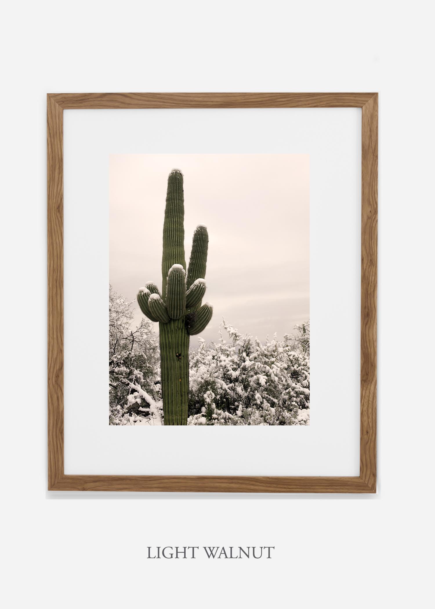 lightwalnutframe-saguaroNo.6-wildercalifornia-art-wallart-cactusprint-homedecor-prints-arizona-botanical-artwork-interiordesign.jpg