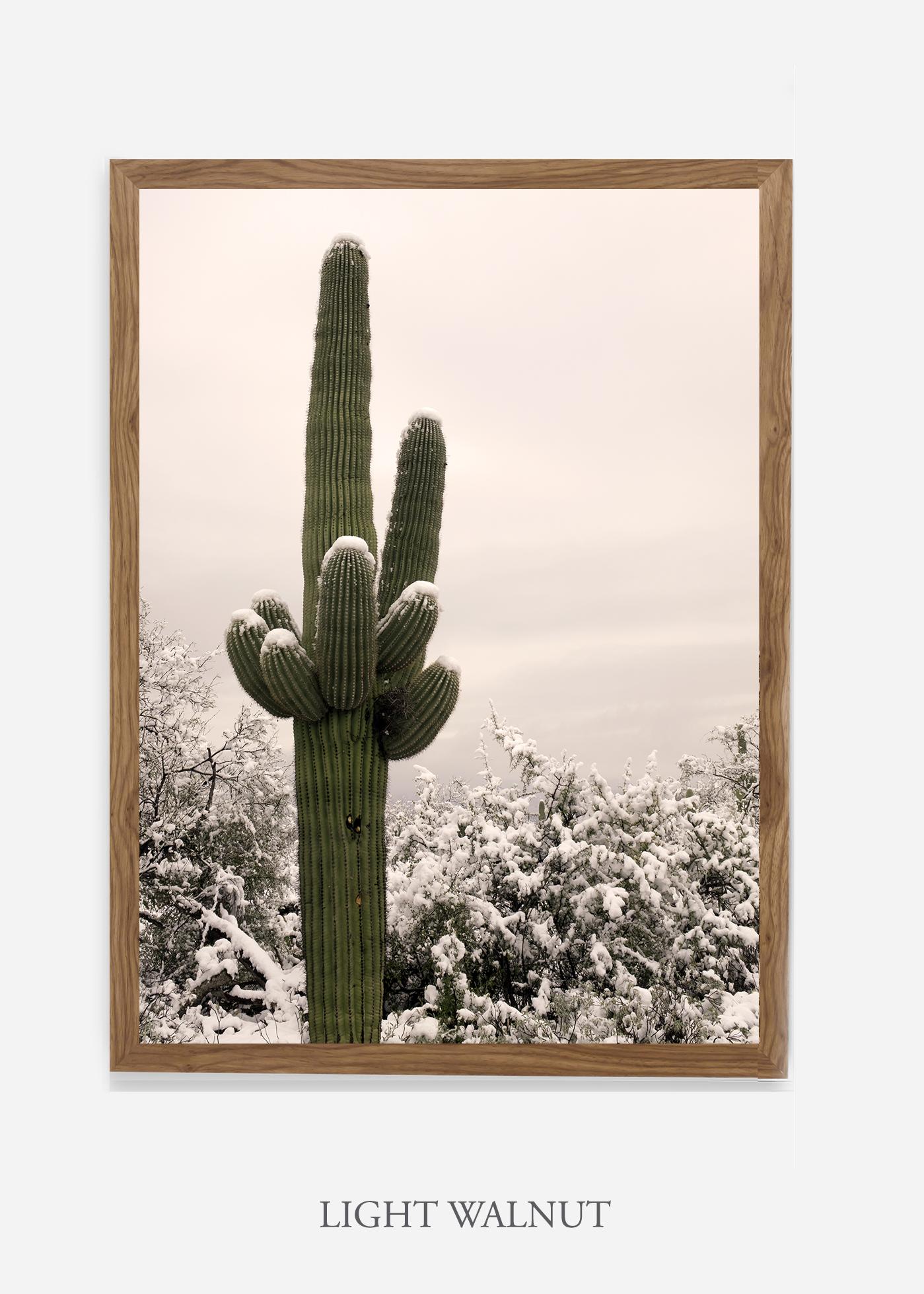 nomat-lightwalnutframe-saguaroNo.6-wildercalifornia-art-wallart-cactusprint-homedecor-prints-arizona-botanical-artwork-interiordesign.jpg