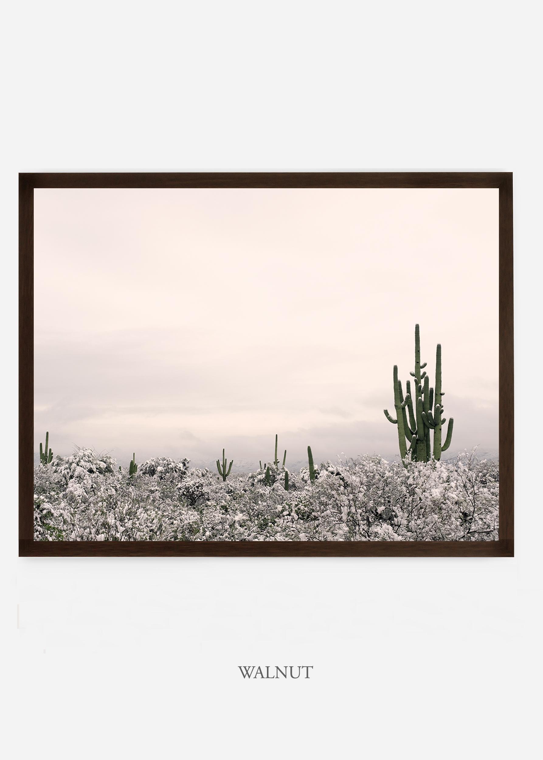 nomat_walnutframe-saguaroNo.7-wildercalifornia-art-wallart-cactusprint-homedecor-prints-arizona-botanical-artwork-interiordesign.jpg
