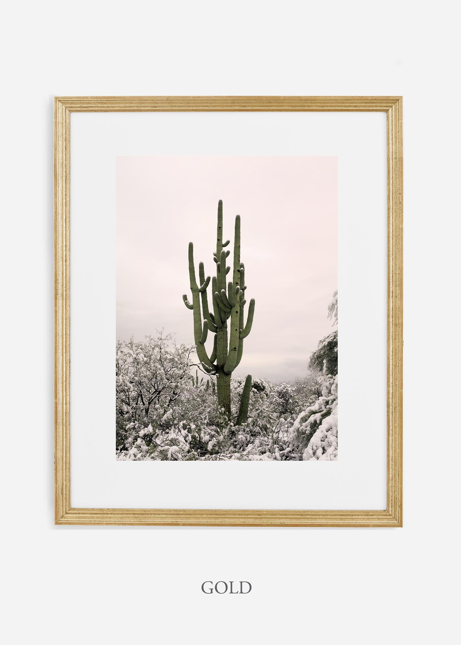 goldframe-saguaroNo.8-wildercalifornia-art-wallart-cactusprint-homedecor-prints-arizona-botanical-artwork-interiordesign.jpg
