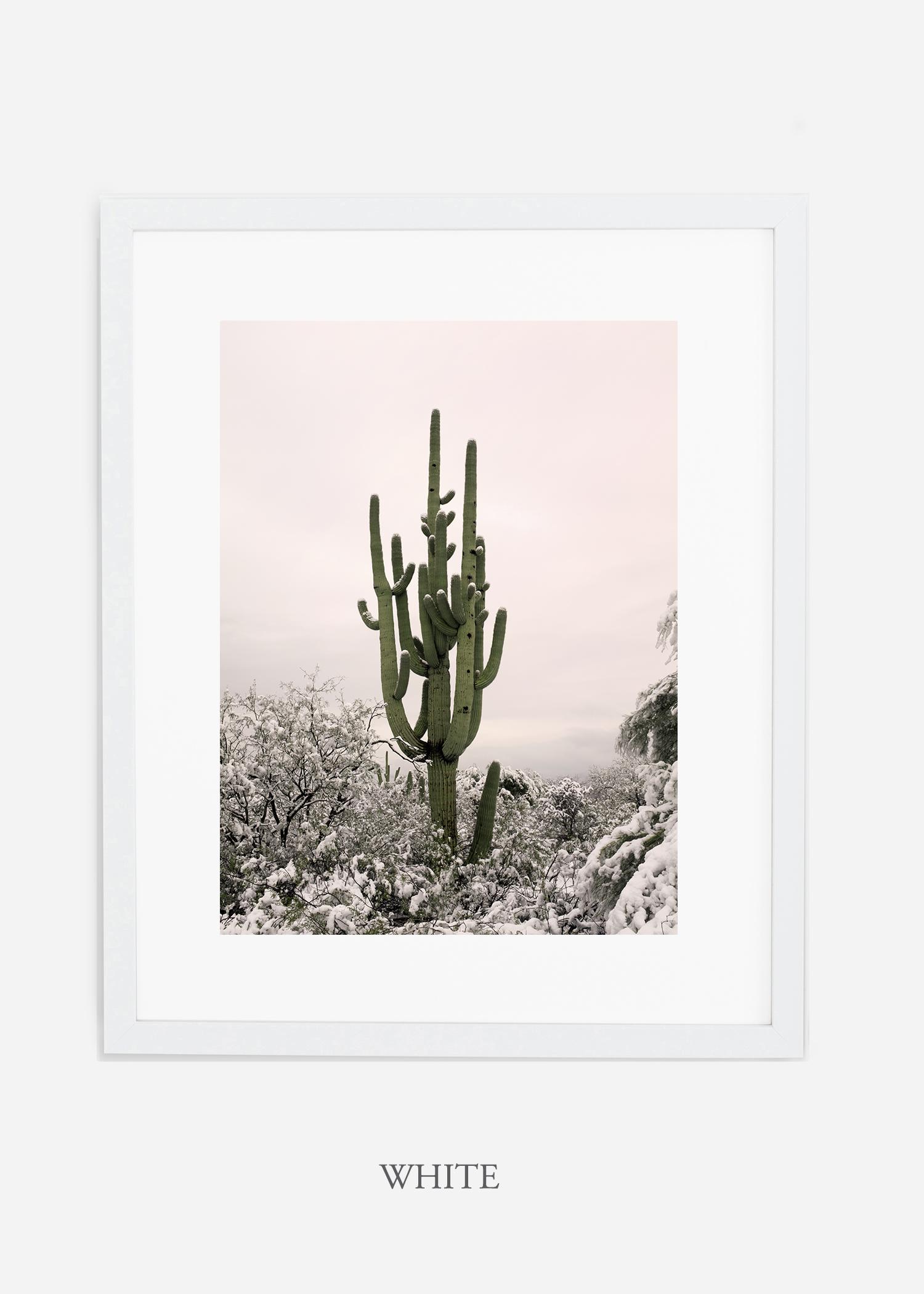 whiteframe-saguaroNo.8-wildercalifornia-art-wallart-cactusprint-homedecor-prints-arizona-botanical-artwork-interiordesign.jpg
