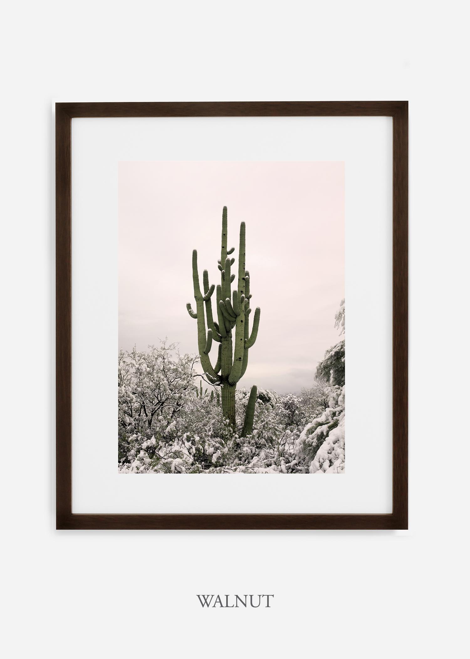 walnutframe-saguaroNo.8-wildercalifornia-art-wallart-cactusprint-homedecor-prints-arizona-botanical-artwork-interiordesign.jpg
