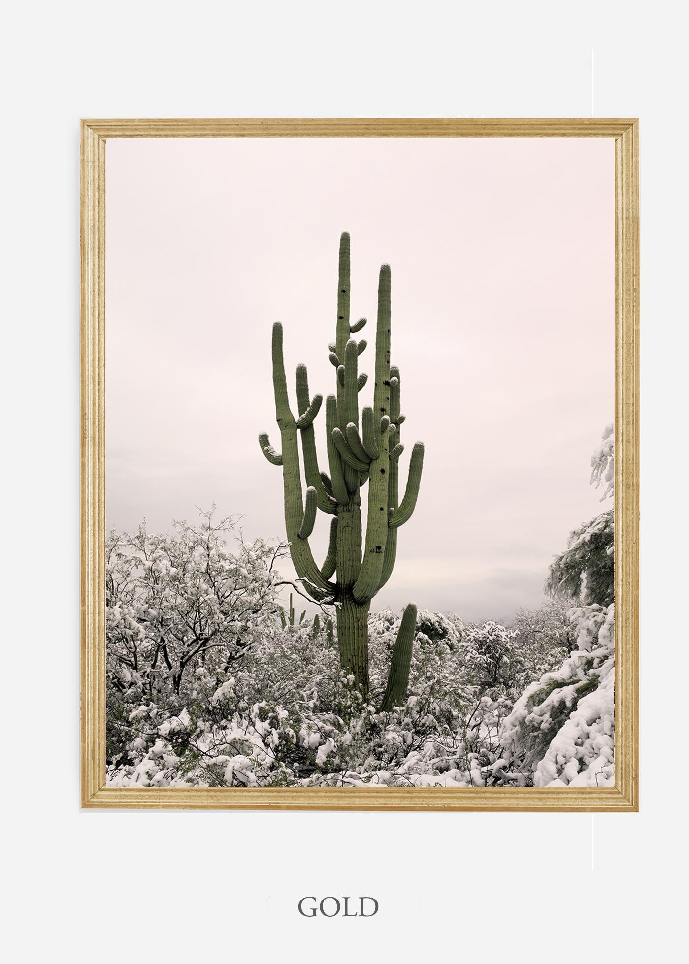 nomat-goldframe-saguaroNo.8-wildercalifornia-art-wallart-cactusprint-homedecor-prints-arizona-botanical-artwork-interiordesign.jpg