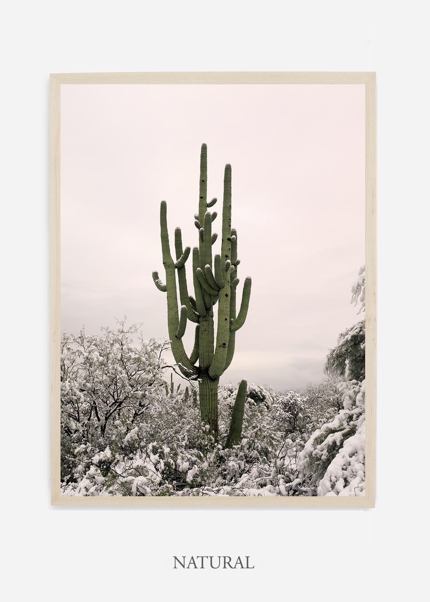 nomat-naturalframe-saguaroNo.8-wildercalifornia-art-wallart-cactusprint-homedecor-prints-arizona-botanical-artwork-interiordesign.jpg