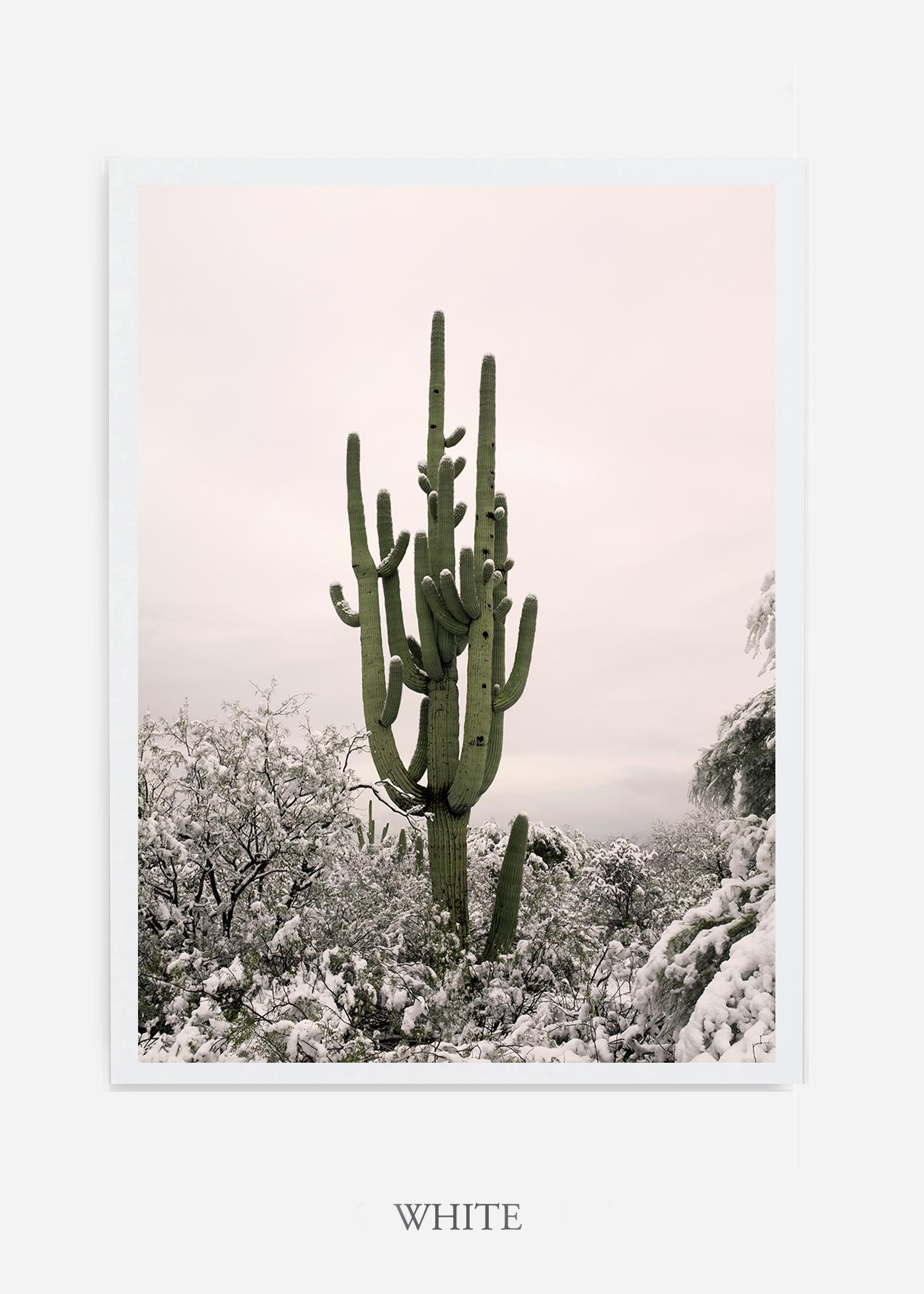 nomat-whiteframe-saguaroNo.8-wildercalifornia-art-wallart-cactusprint-homedecor-prints-arizona-botanical-artwork-interiordesign.jpg