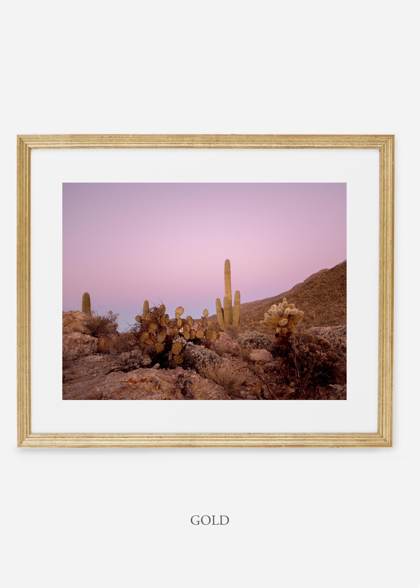 goldframe-saguaroNo.9-wildercalifornia-art-wallart-cactusprint-homedecor-prints-arizona-botanical-artwork-interiordesign.jpg