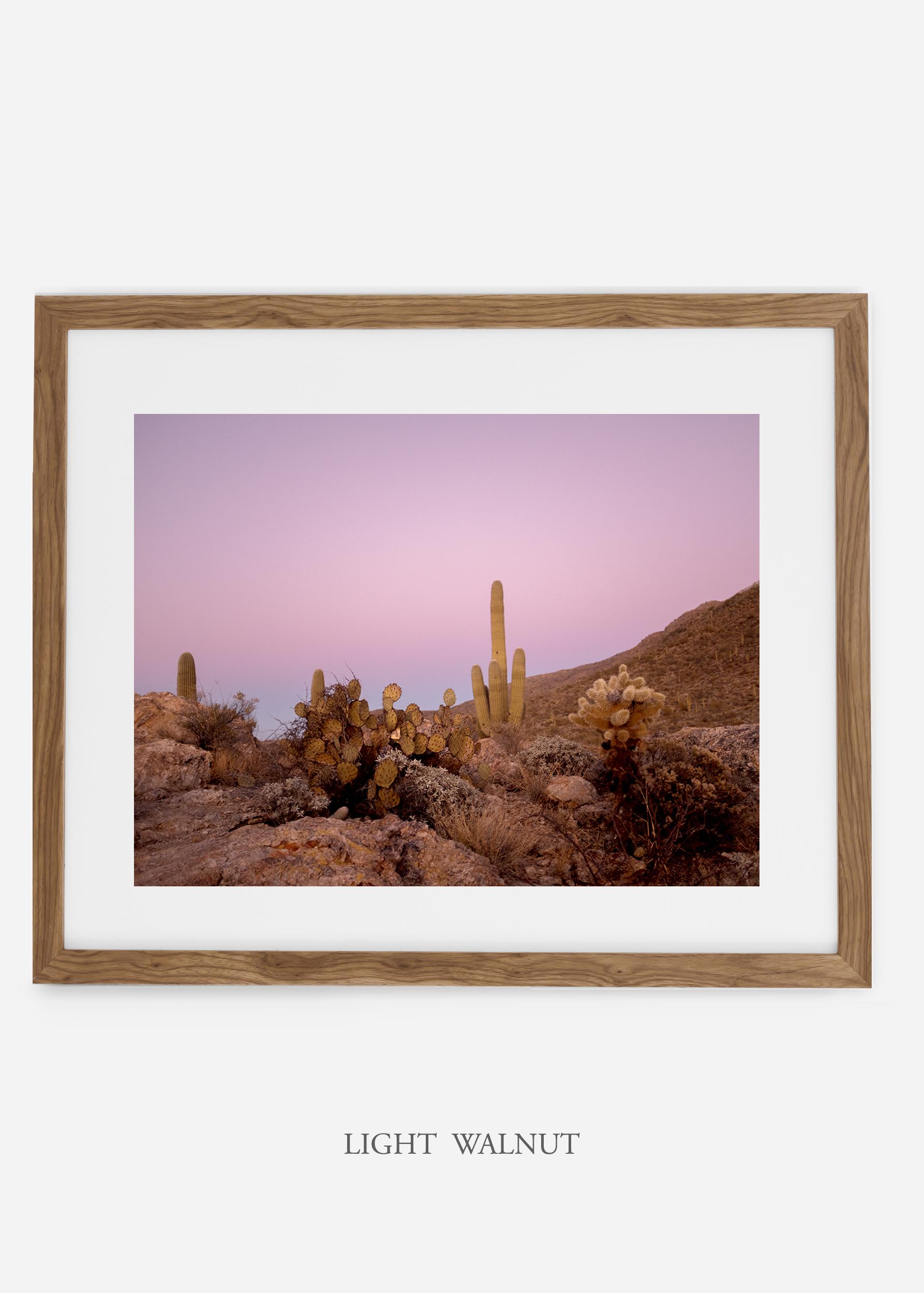 lightwalnutframe-saguaroNo.9-wildercalifornia-art-wallart-cactusprint-homedecor-prints-arizona-botanical-artwork-interiordesign.jpg