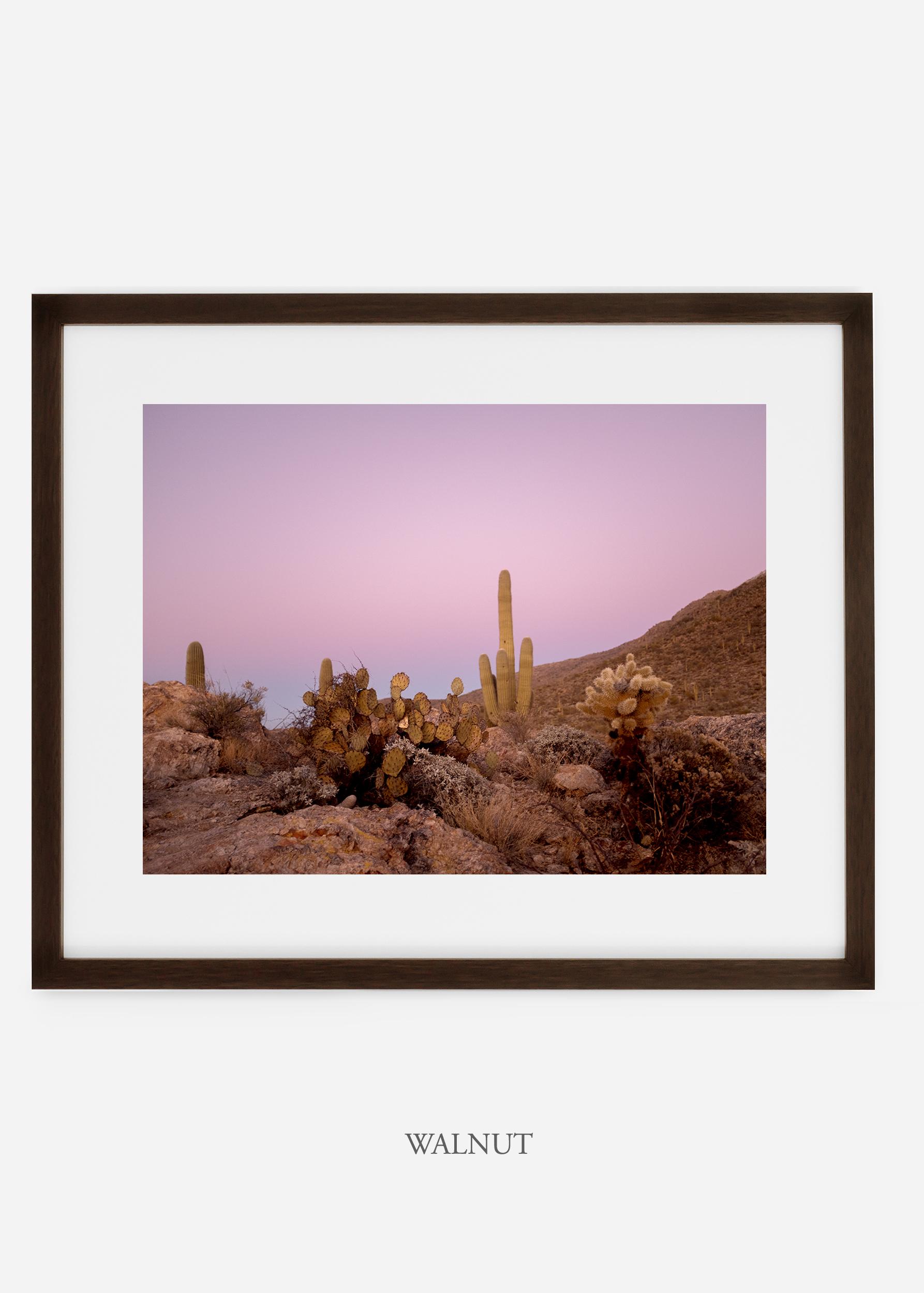 walnutframe-saguaroNo.9-wildercalifornia-art-wallart-cactusprint-homedecor-prints-arizona-botanical-artwork-interiordesign.jpg