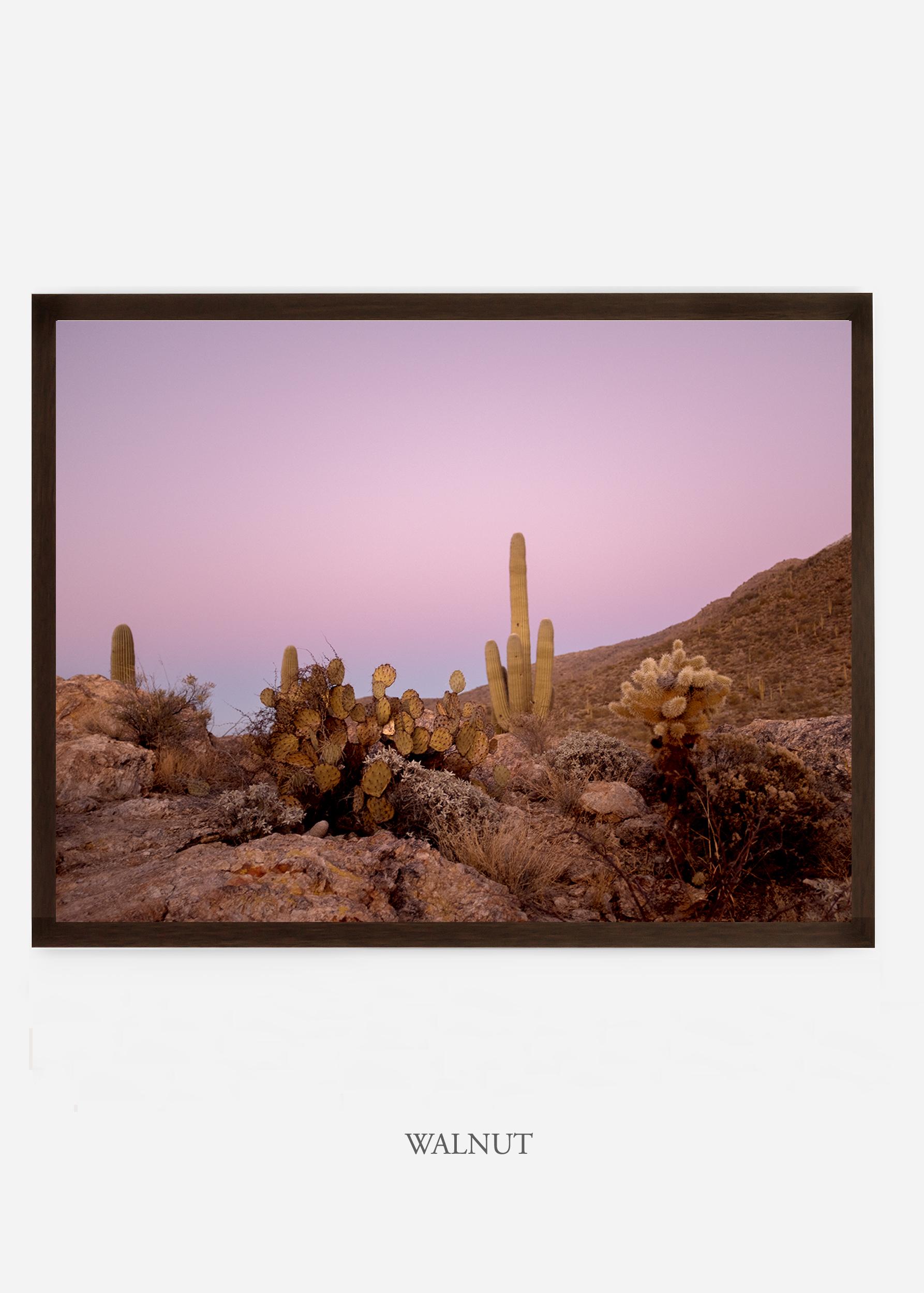 nomat_walnutframe-saguaroNo.9-wildercalifornia-art-wallart-cactusprint-homedecor-prints-arizona-botanical-artwork-interiordesign.jpg