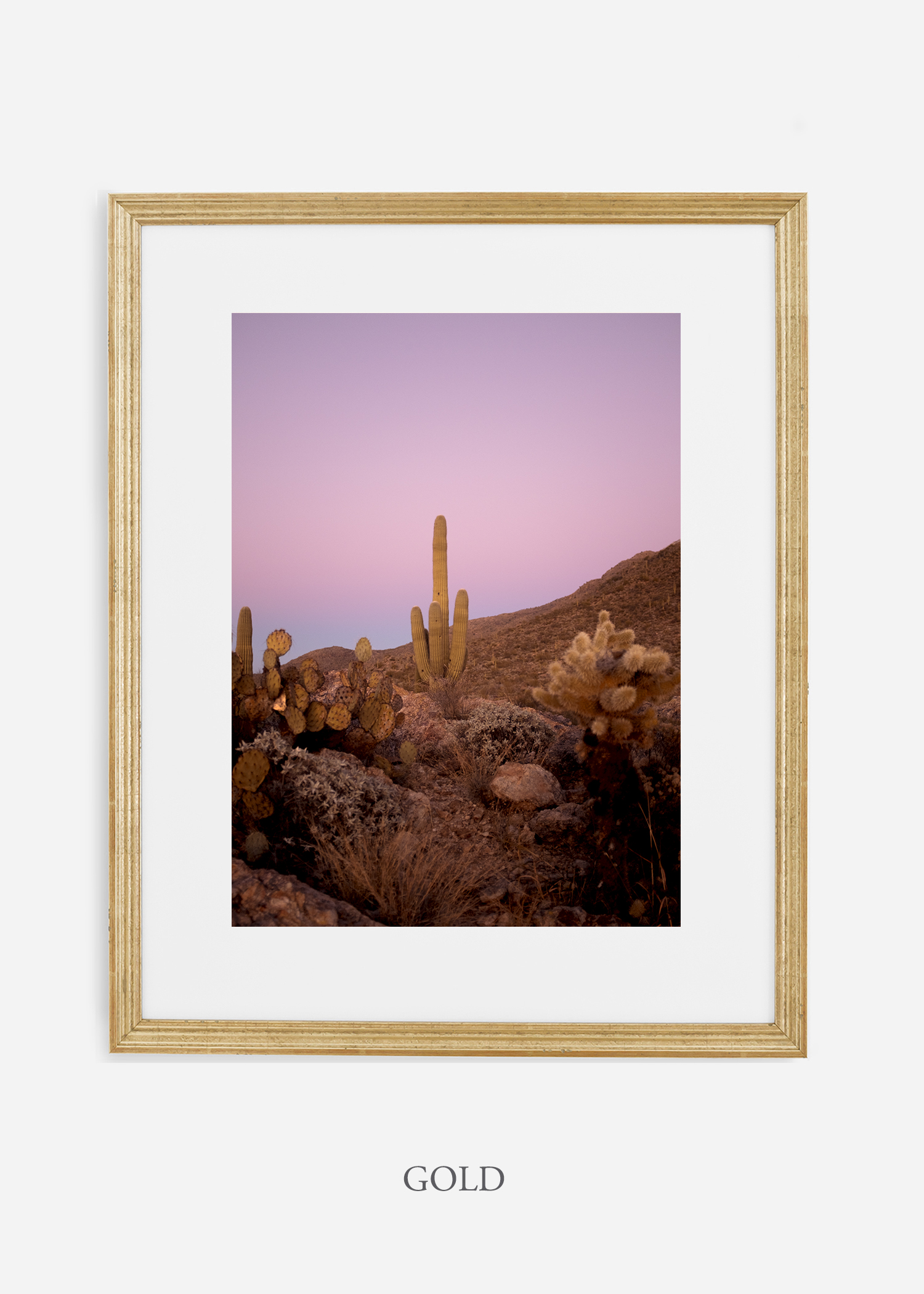 goldframe-saguaroNo.10-wildercalifornia-art-wallart-cactusprint-homedecor-prints-arizona-botanical-artwork-interiordesign.jpg