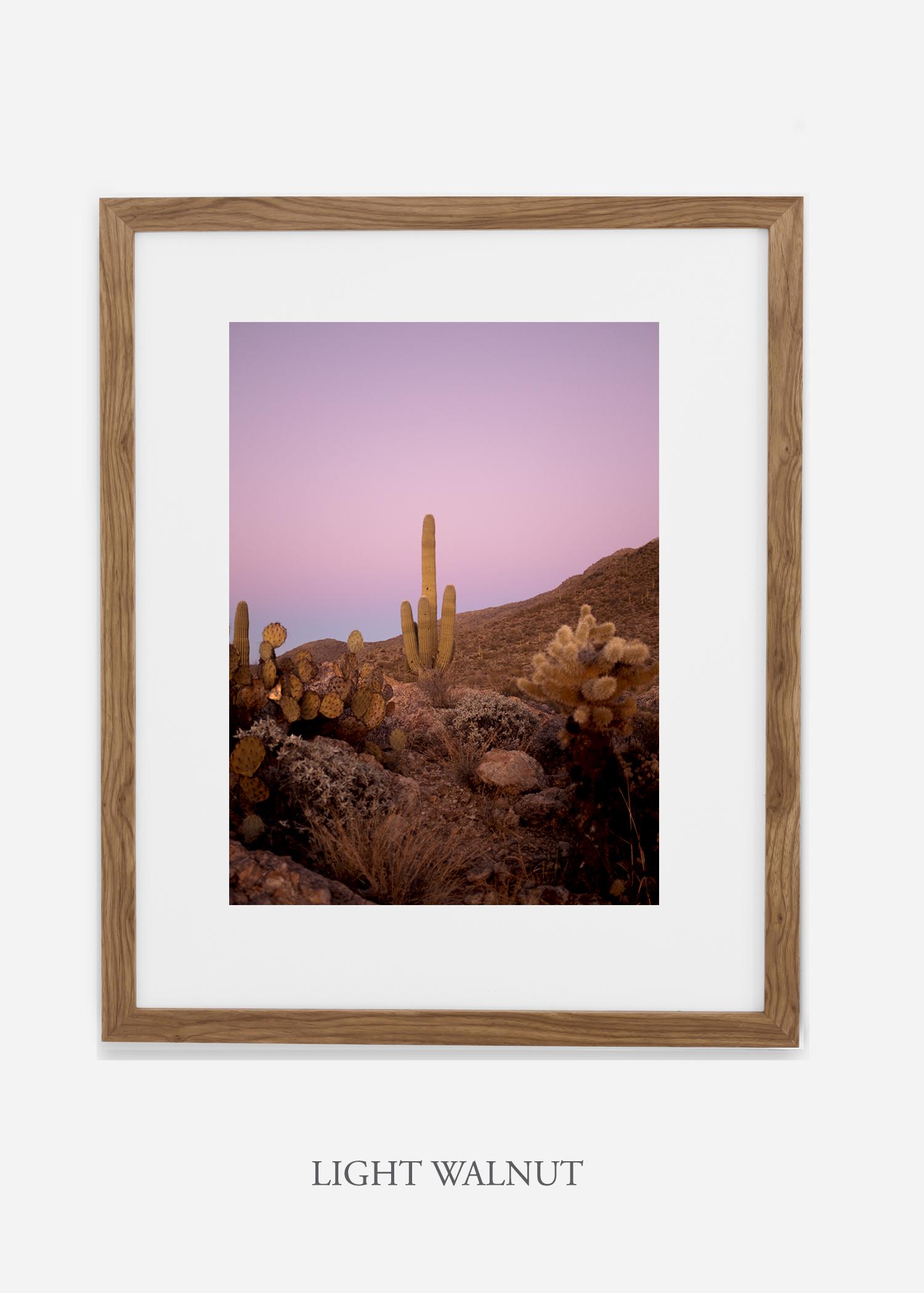 lightwalnutframe-saguaroNo.10-wildercalifornia-art-wallart-cactusprint-homedecor-prints-arizona-botanical-artwork-interiordesign.jpg