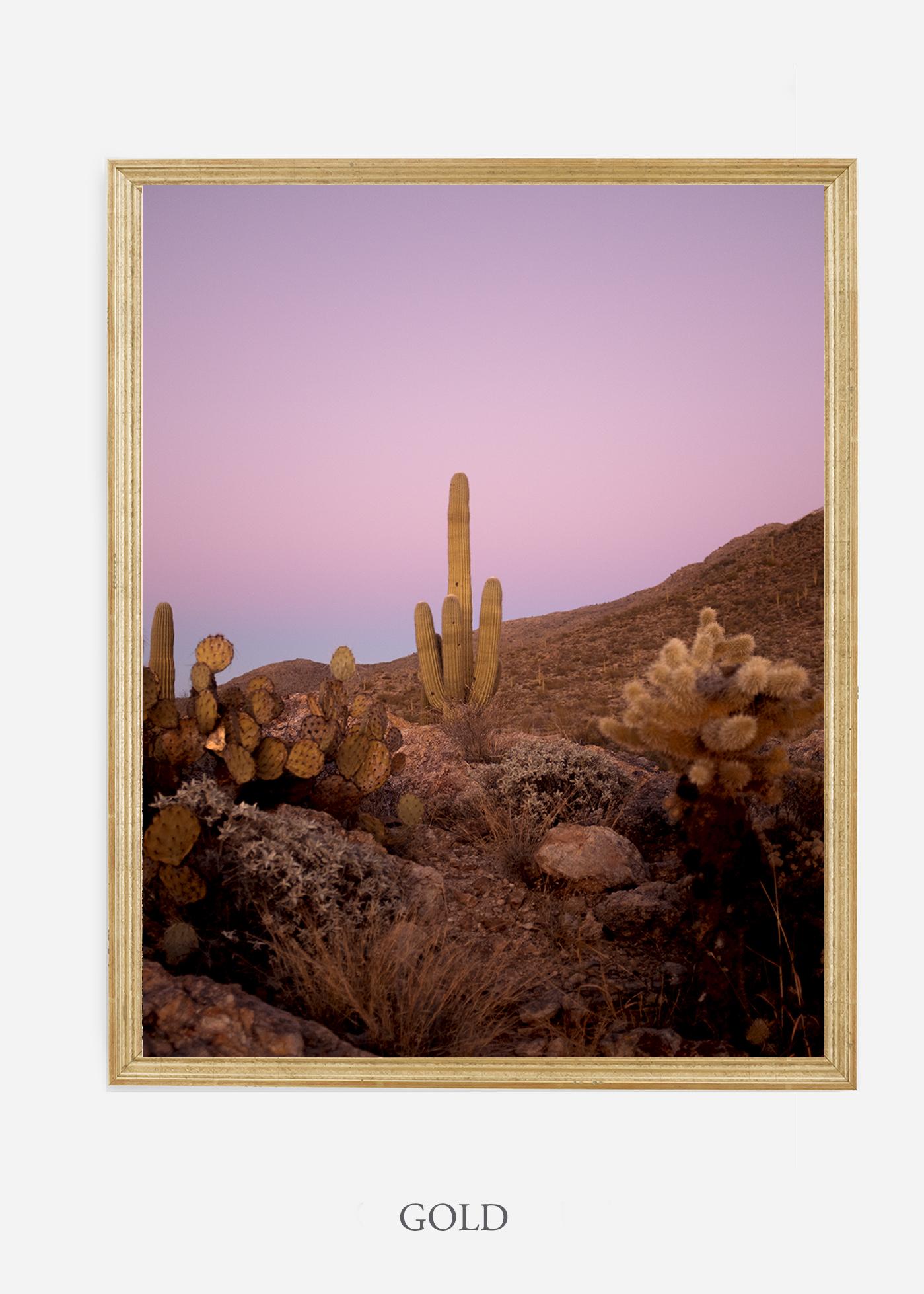 nomat-goldframe-saguaroNo.10-wildercalifornia-art-wallart-cactusprint-homedecor-prints-arizona-botanical-artwork-interiordesign.jpg