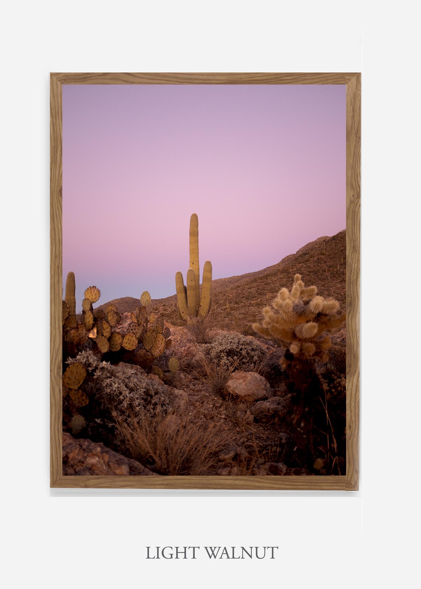 nomat-lightwalnutframe-saguaroNo.10-wildercalifornia-art-wallart-cactusprint-homedecor-prints-arizona-botanical-artwork-interiordesign.jpg