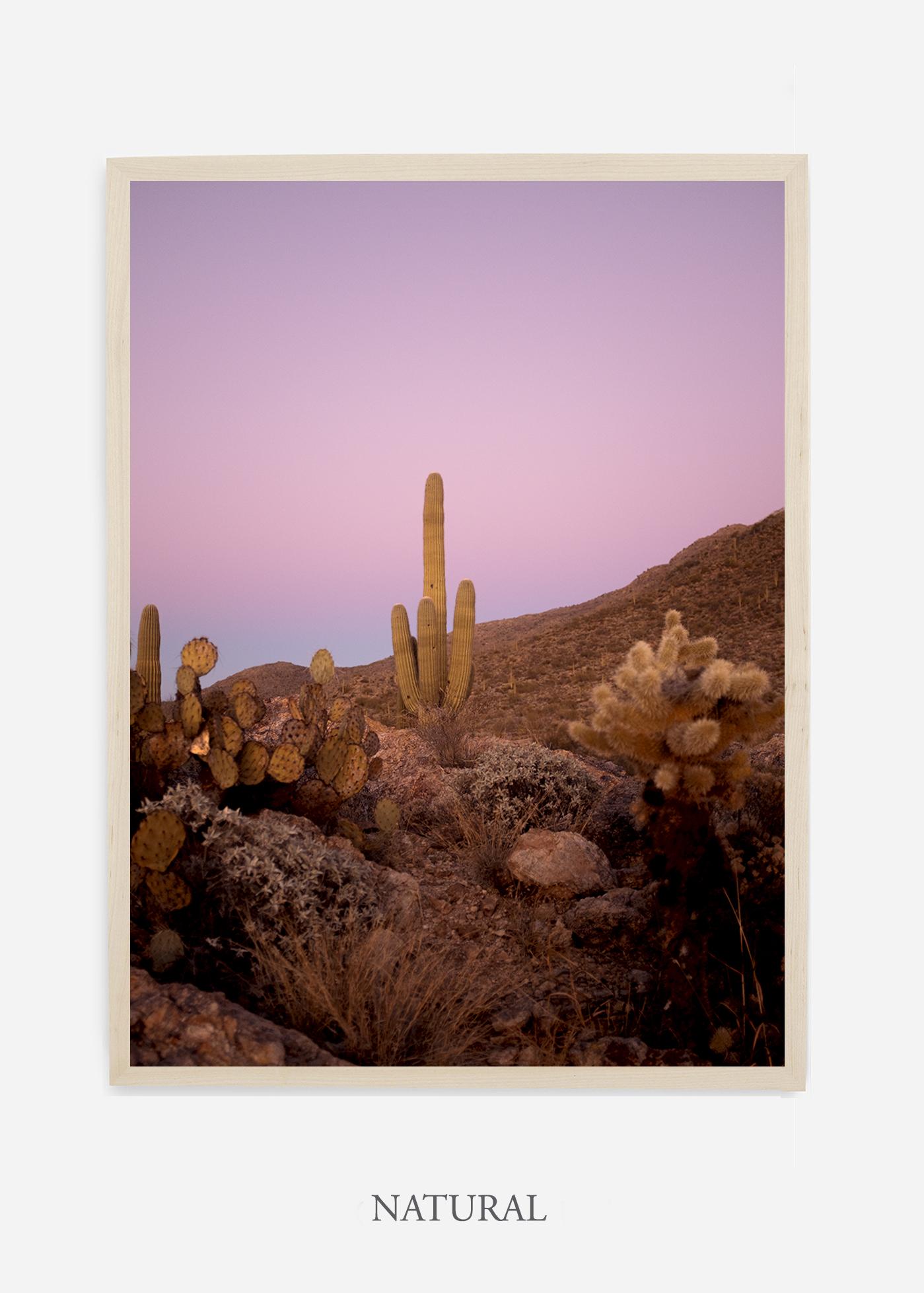 nomat-naturalframe-saguaroNo.10-wildercalifornia-art-wallart-cactusprint-homedecor-prints-arizona-botanical-artwork-interiordesign.jpg
