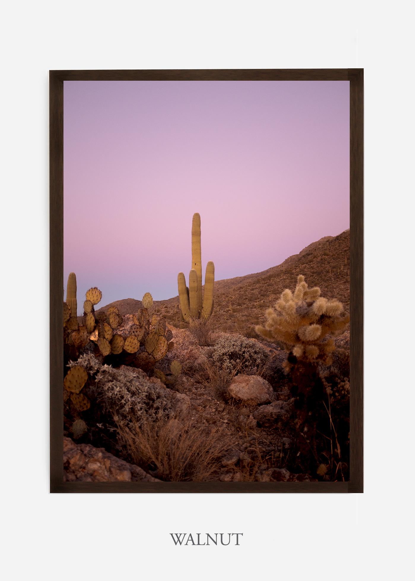 nomat-walnutframe-saguaroNo.10-wildercalifornia-art-wallart-cactusprint-homedecor-prints-arizona-botanical-artwork-interiordesign.jpg
