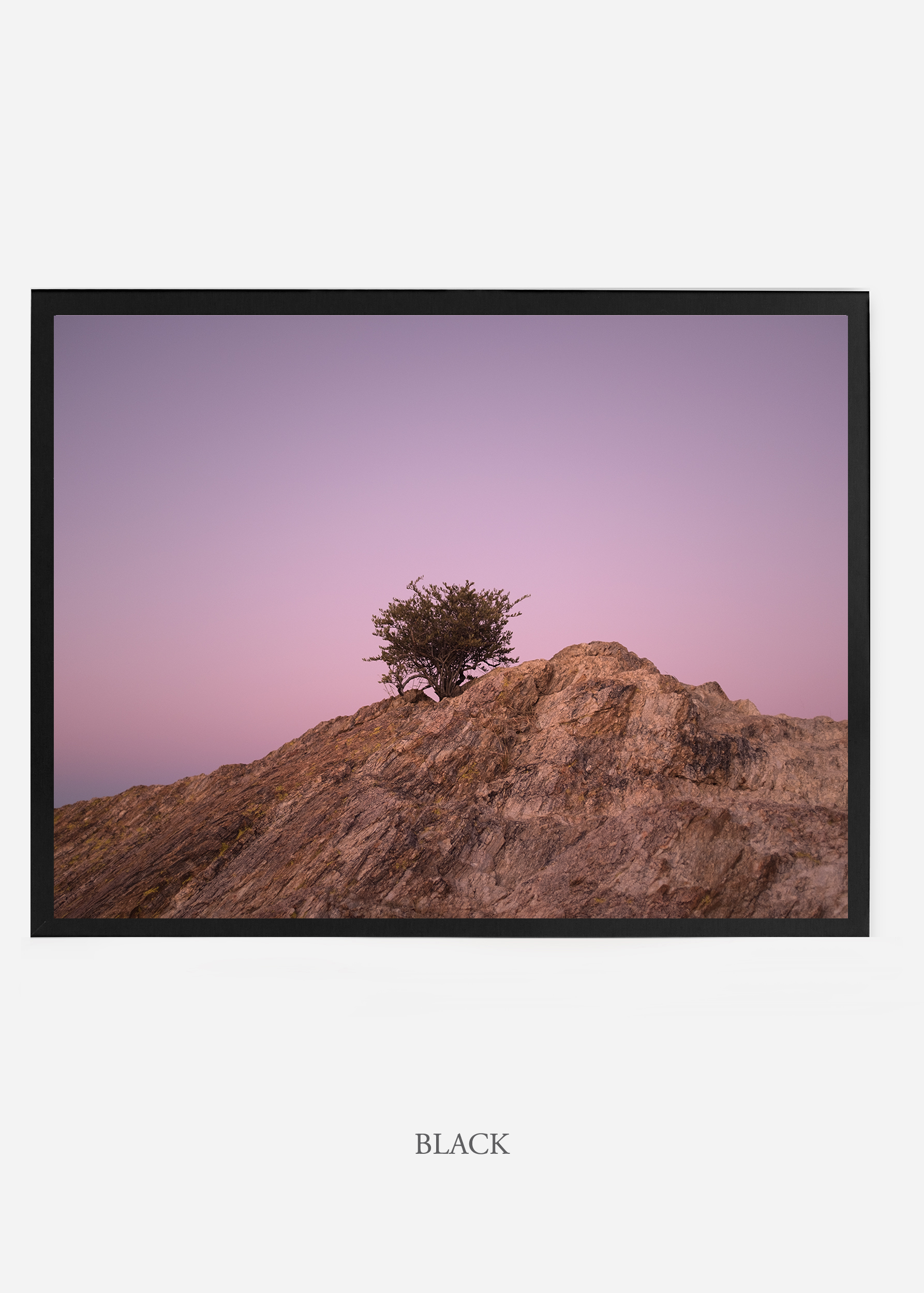 nomat_blackframe-saguaroNo.11-wildercalifornia-art-wallart-cactusprint-homedecor-prints-arizona-botanical-artwork-interiordesign.jpg
