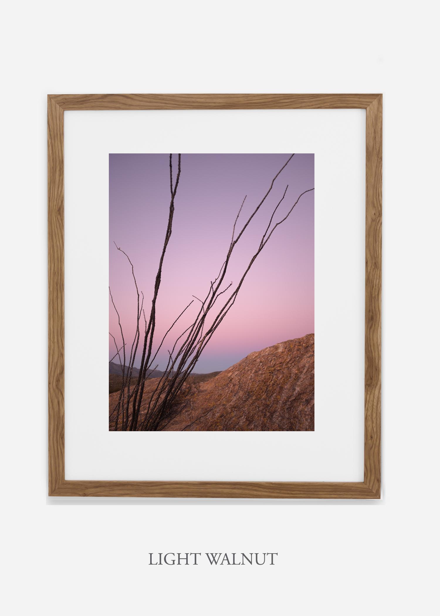 lightwalnutframe-saguaroNo.12-wildercalifornia-art-wallart-cactusprint-homedecor-prints-arizona-botanical-artwork-interiordesign.jpg