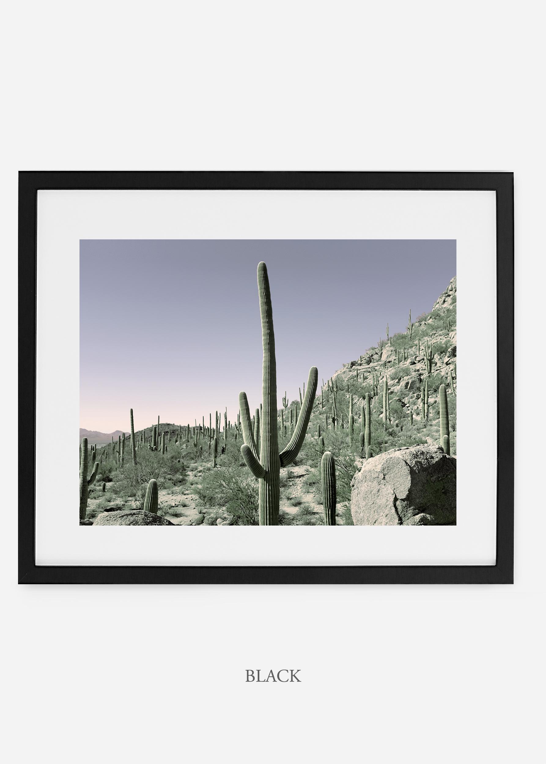 blackframe-saguaroNo.13-wildercalifornia-art-wallart-cactusprint-homedecor-prints-arizona-botanical-artwork-interiordesign.jpg