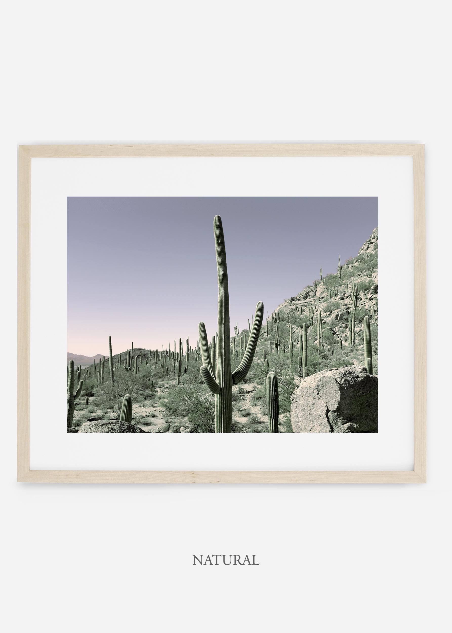 naturalframe-saguaroNo.11-wildercalifornia-art-wallart-cactusprint-homedecor-prints-arizona-botanical-artwork-interiordesign.jpg