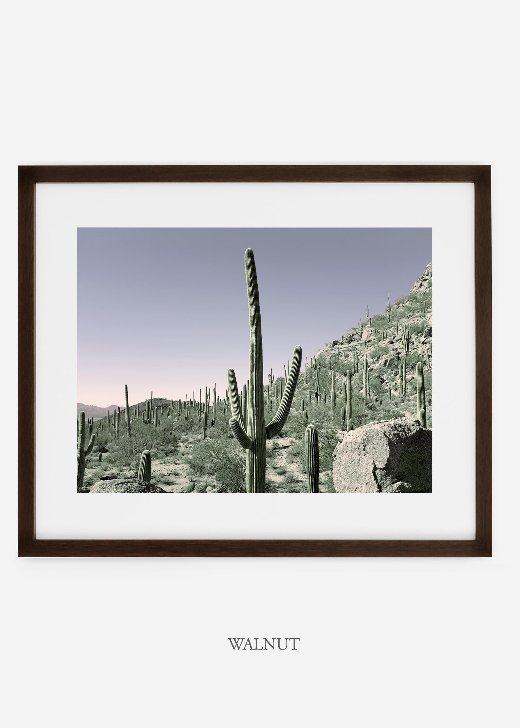 walnutframe-saguaroNo.13-wildercalifornia-art-wallart-cactusprint-homedecor-prints-arizona-botanical-artwork-interiordesign.jpg