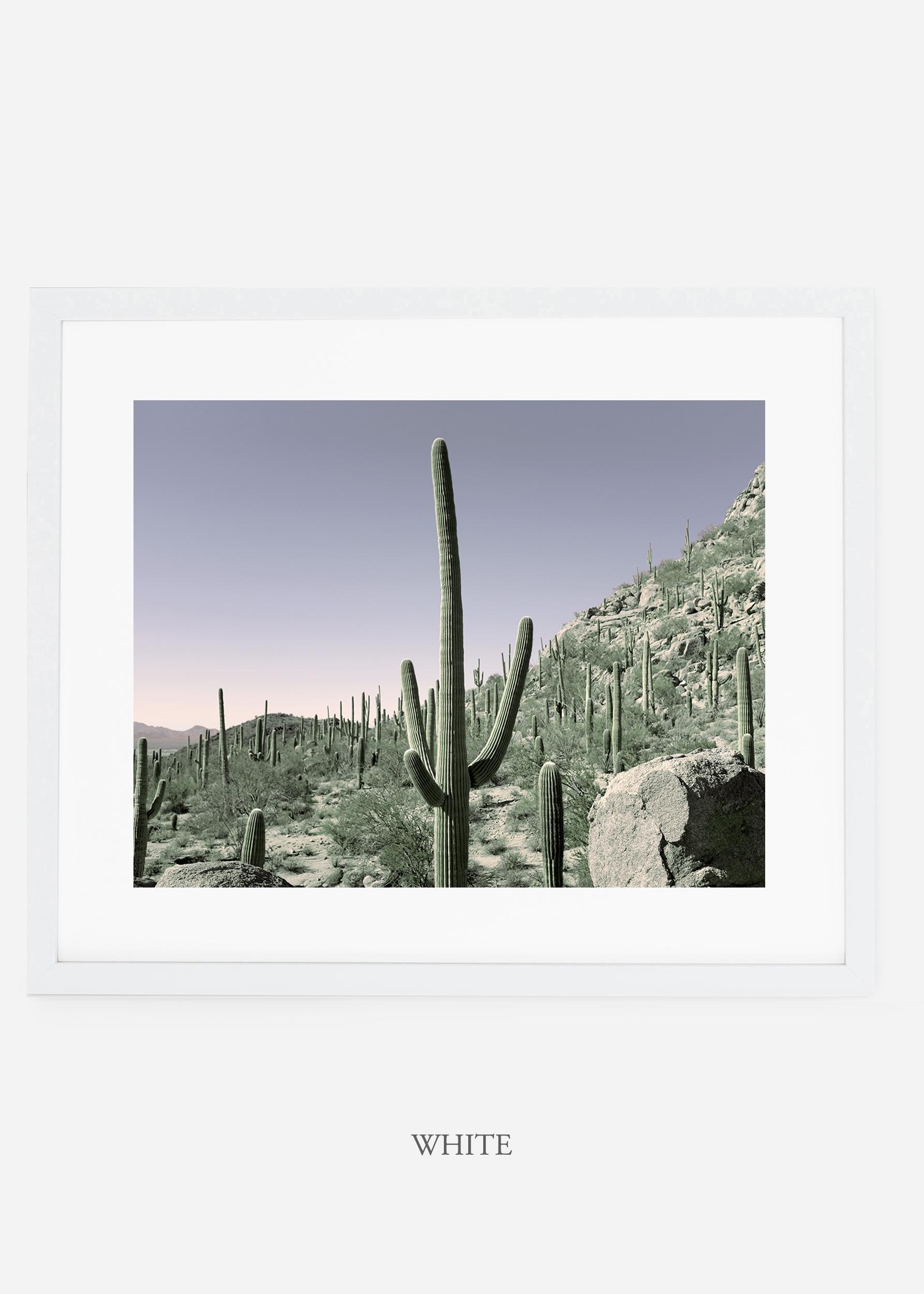 whiteframe-saguaroNo.13-wildercalifornia-art-wallart-cactusprint-homedecor-prints-arizona-botanical-artwork-interiordesign.jpg