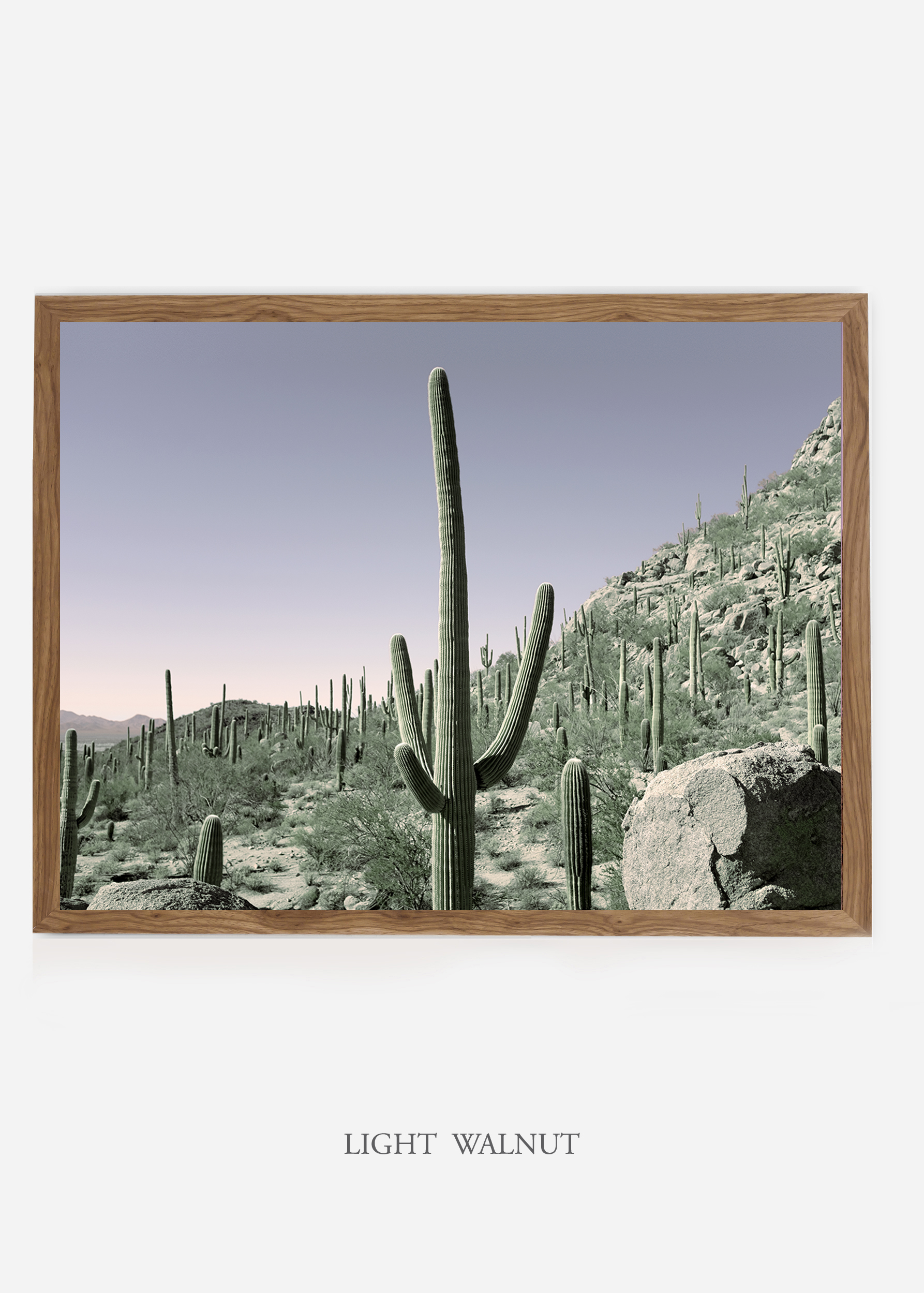 nomat_lightwalnutframe-saguaroNo.13-wildercalifornia-art-wallart-cactusprint-homedecor-prints-arizona-botanical-artwork-interiordesign.jpg