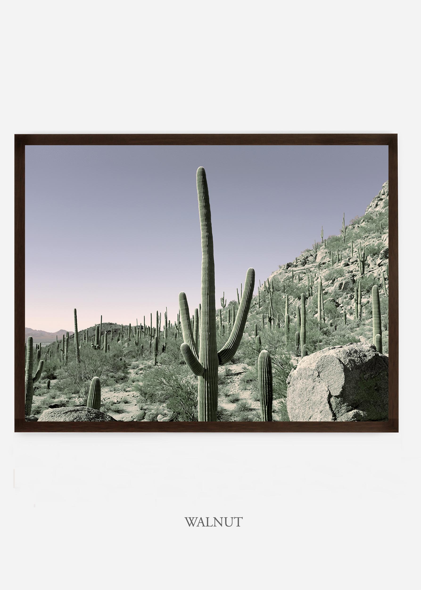 nomat_walnutframe-saguaroNo.13-wildercalifornia-art-wallart-cactusprint-homedecor-prints-arizona-botanical-artwork-interiordesign.jpg
