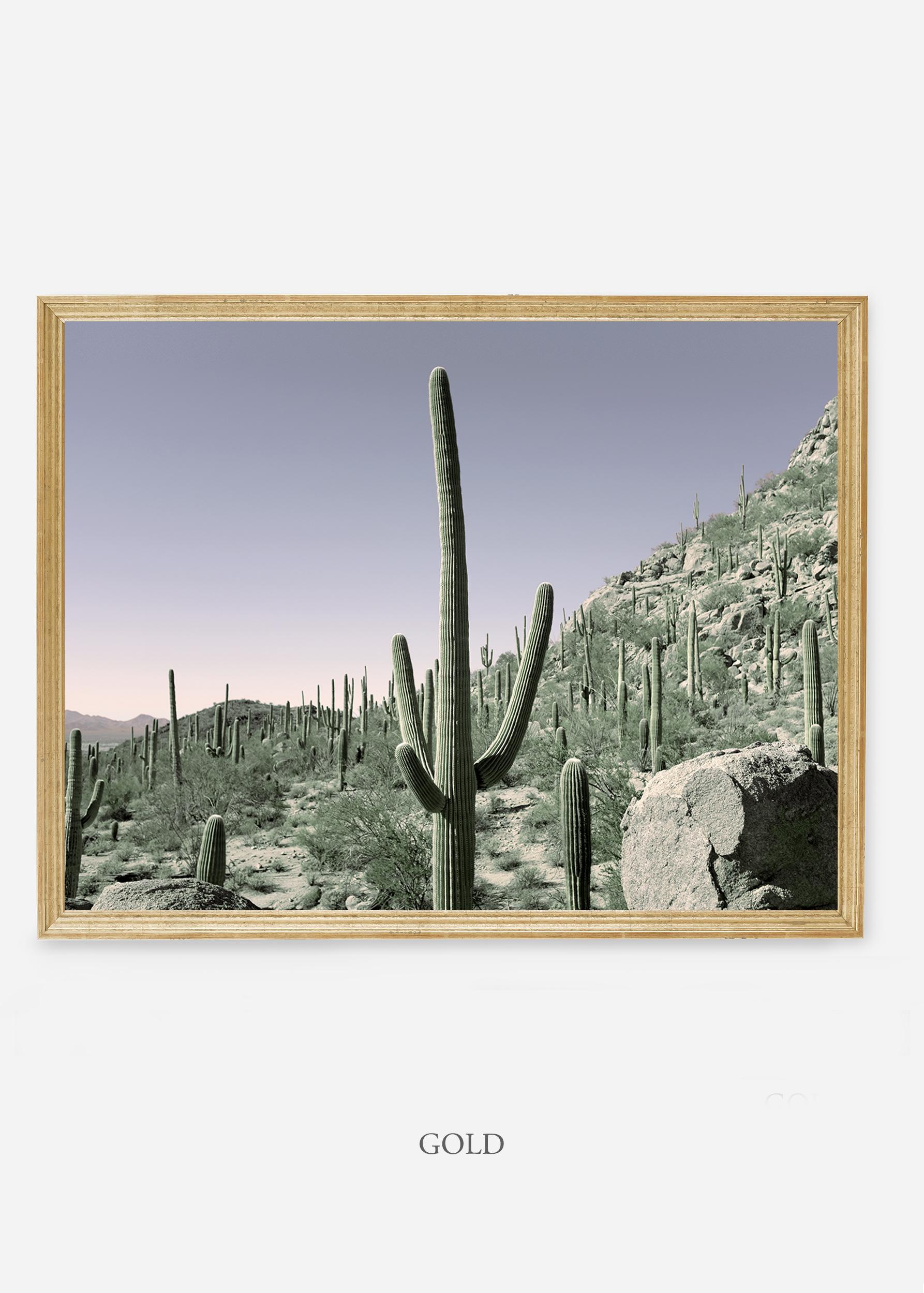 nomat-goldframe-saguaroNo.13-wildercalifornia-art-wallart-cactusprint-homedecor-prints-arizona-botanical-artwork-interiordesign.jpg