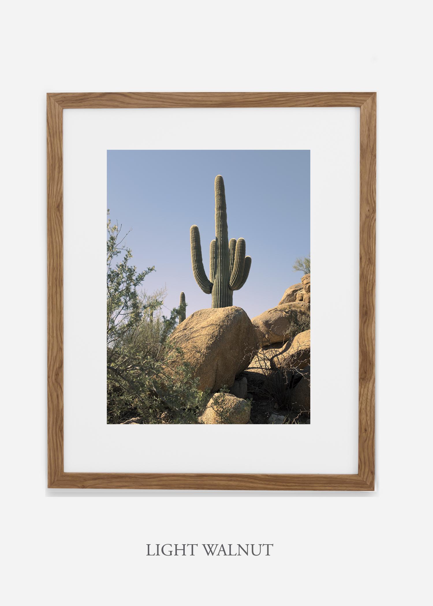 lightwalnutframe-saguaroNo.14-wildercalifornia-art-wallart-cactusprint-homedecor-prints-arizona-botanical-artwork-interiordesign.jpg