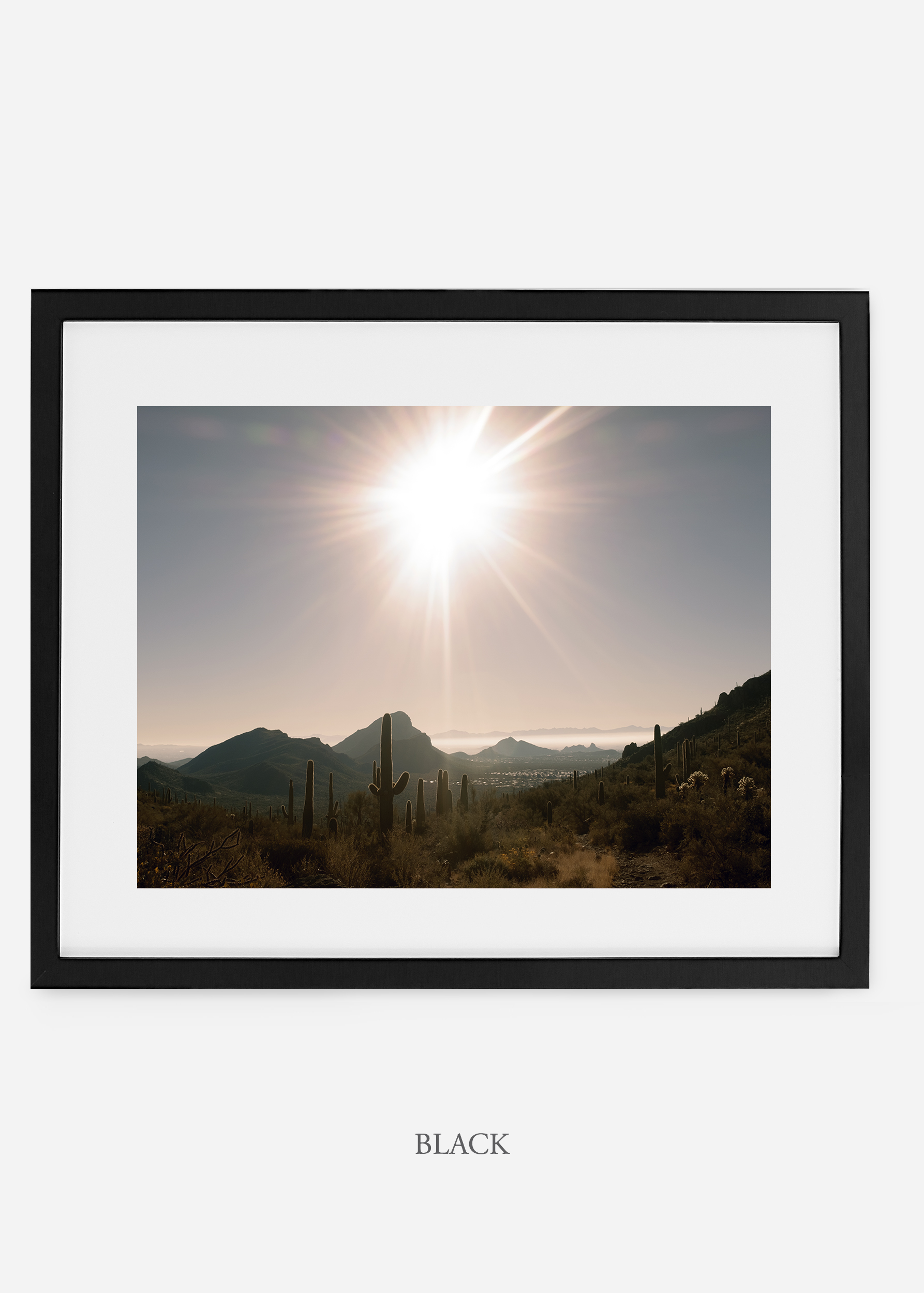 blackframe-saguaroNo.15-wildercalifornia-art-wallart-cactusprint-homedecor-prints-arizona-botanical-artwork-interiordesign.jpg