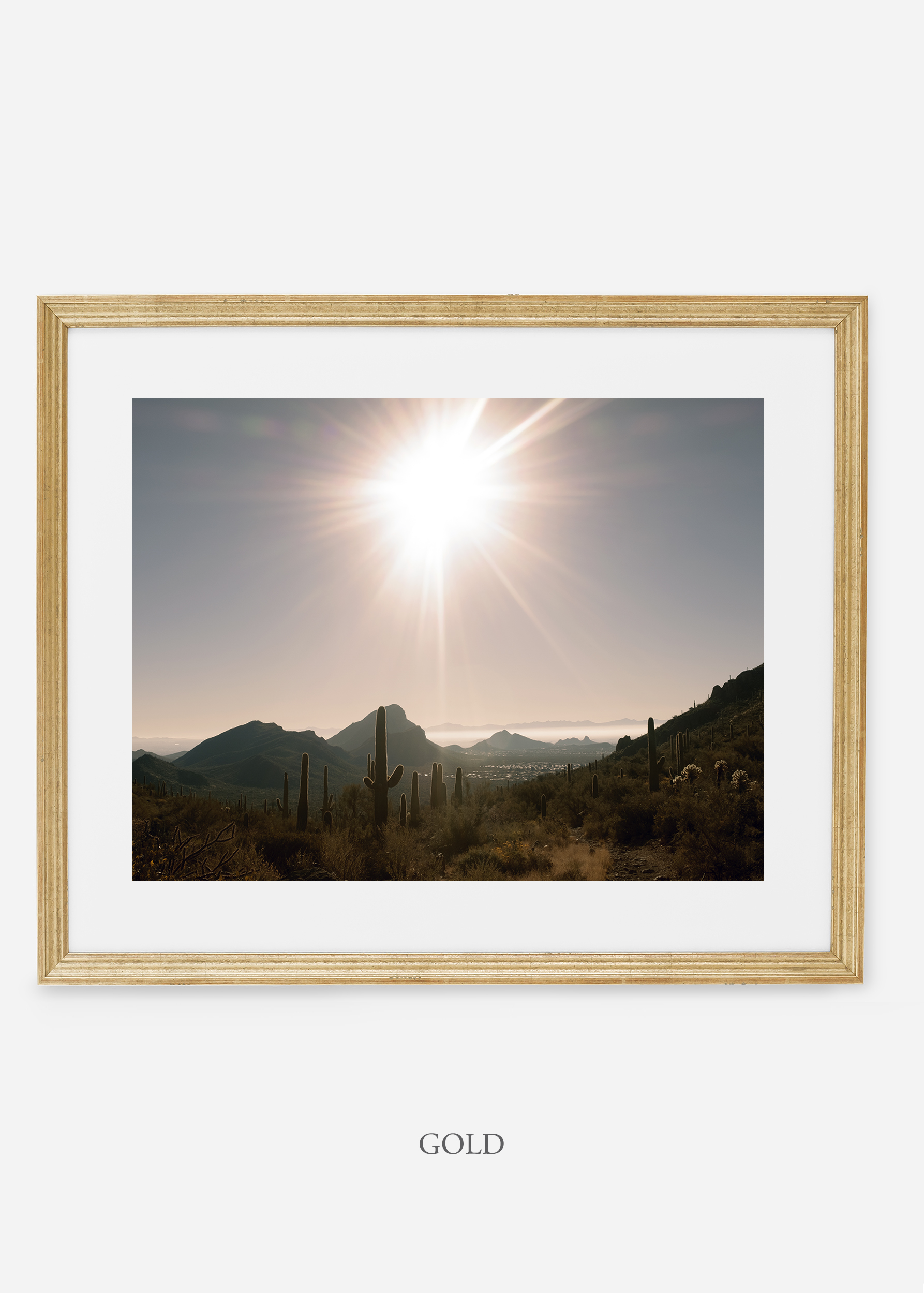 goldframe-saguaroNo.15-wildercalifornia-art-wallart-cactusprint-homedecor-prints-arizona-botanical-artwork-interiordesign.jpg