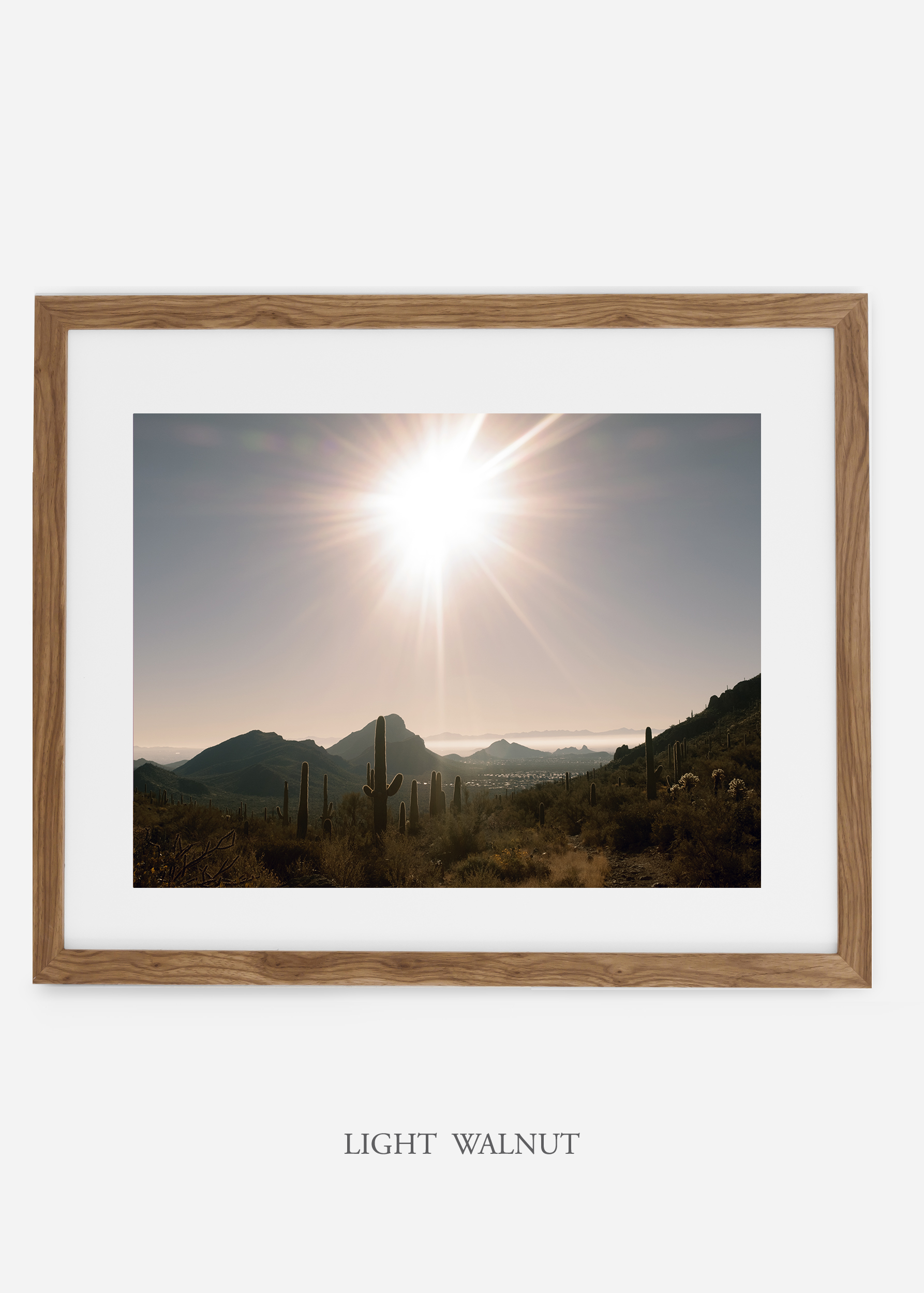 lightwalnutframe-saguaroNo.15-wildercalifornia-art-wallart-cactusprint-homedecor-prints-arizona-botanical-artwork-interiordesign.jpg